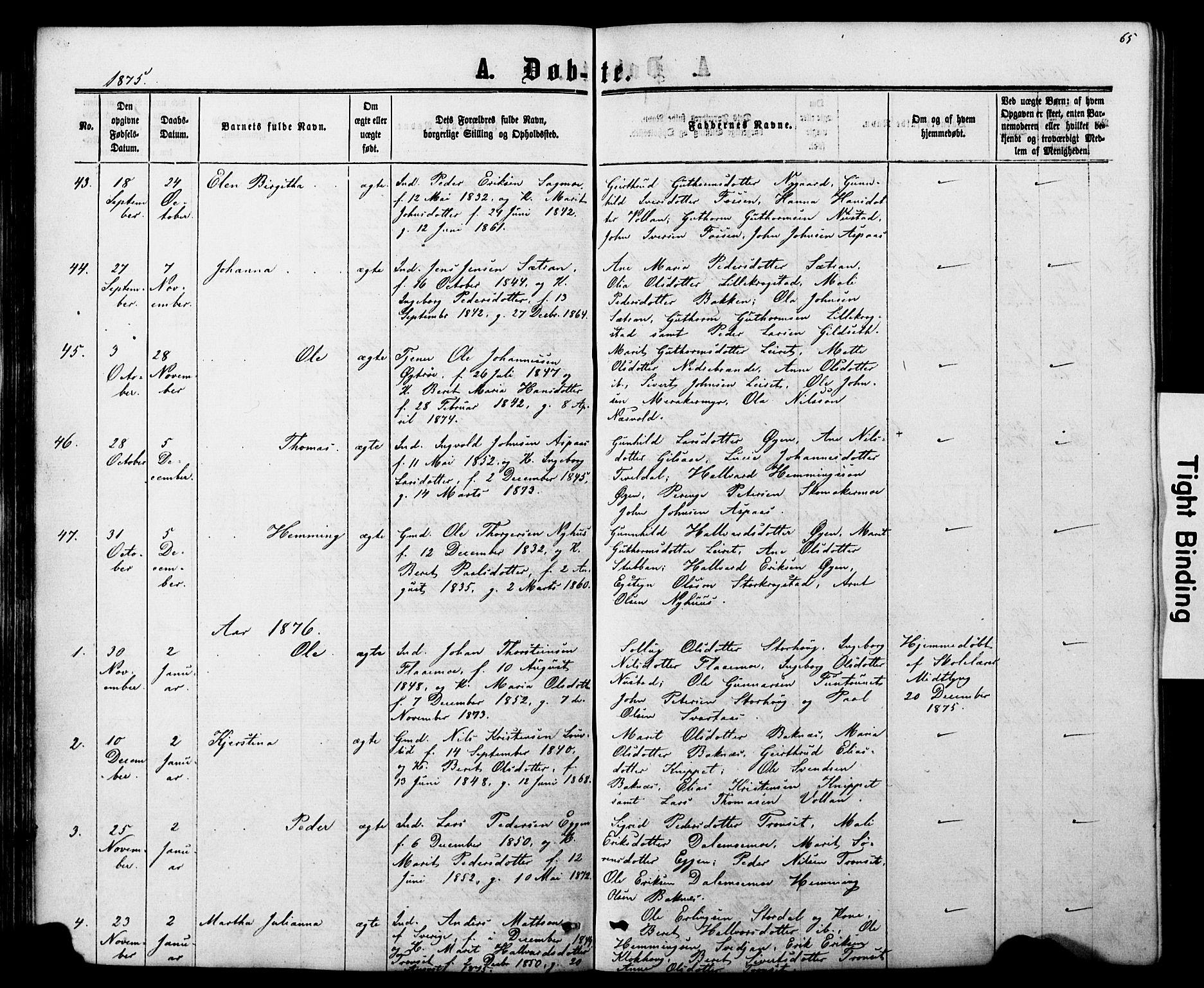 SAT, Ministerialprotokoller, klokkerbøker og fødselsregistre - Nord-Trøndelag, 706/L0049: Parish register (copy) no. 706C01, 1864-1895, p. 65