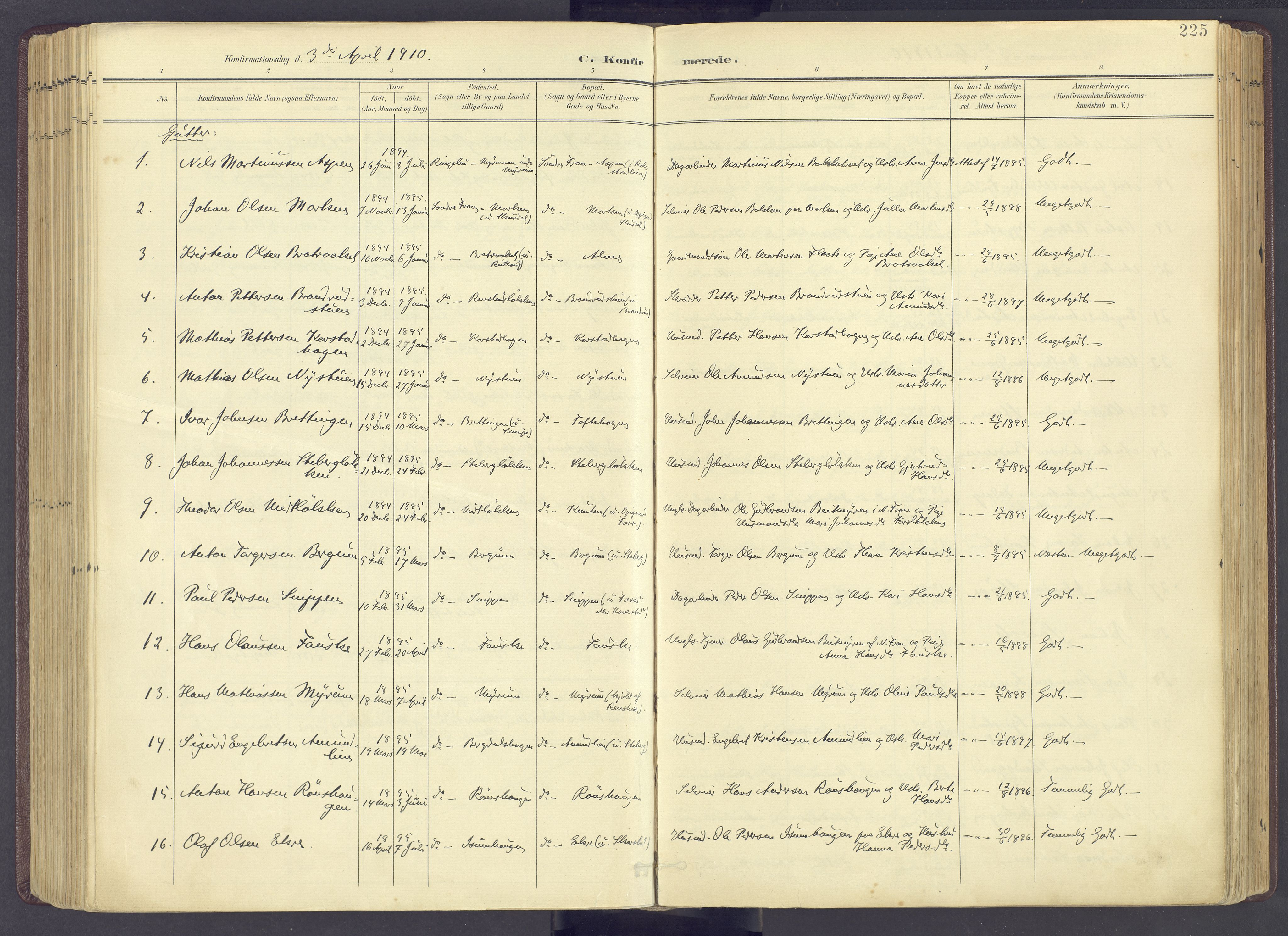 SAH, Sør-Fron prestekontor, H/Ha/Haa/L0004: Parish register (official) no. 4, 1898-1919, p. 225