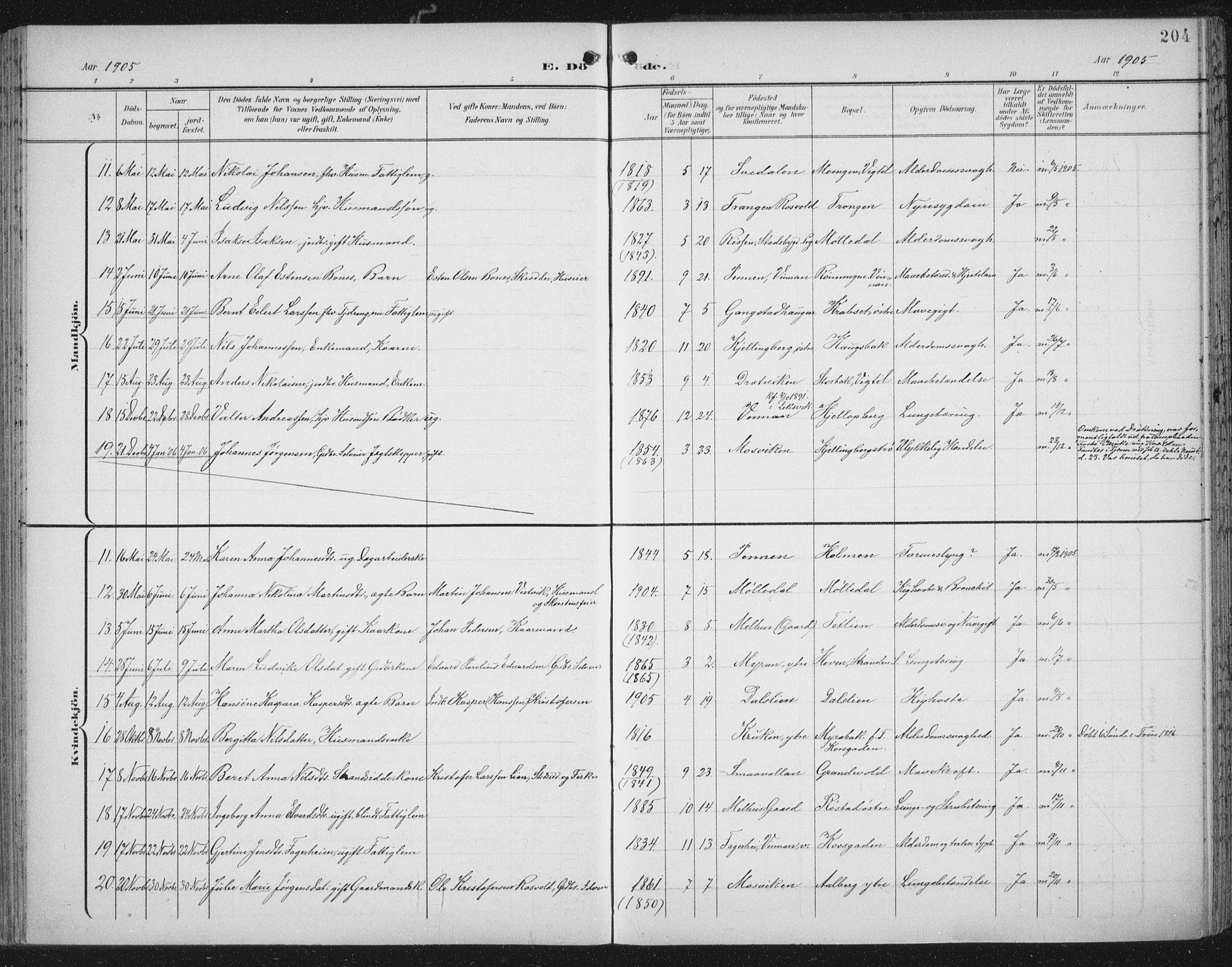 SAT, Ministerialprotokoller, klokkerbøker og fødselsregistre - Nord-Trøndelag, 701/L0011: Parish register (official) no. 701A11, 1899-1915, p. 204