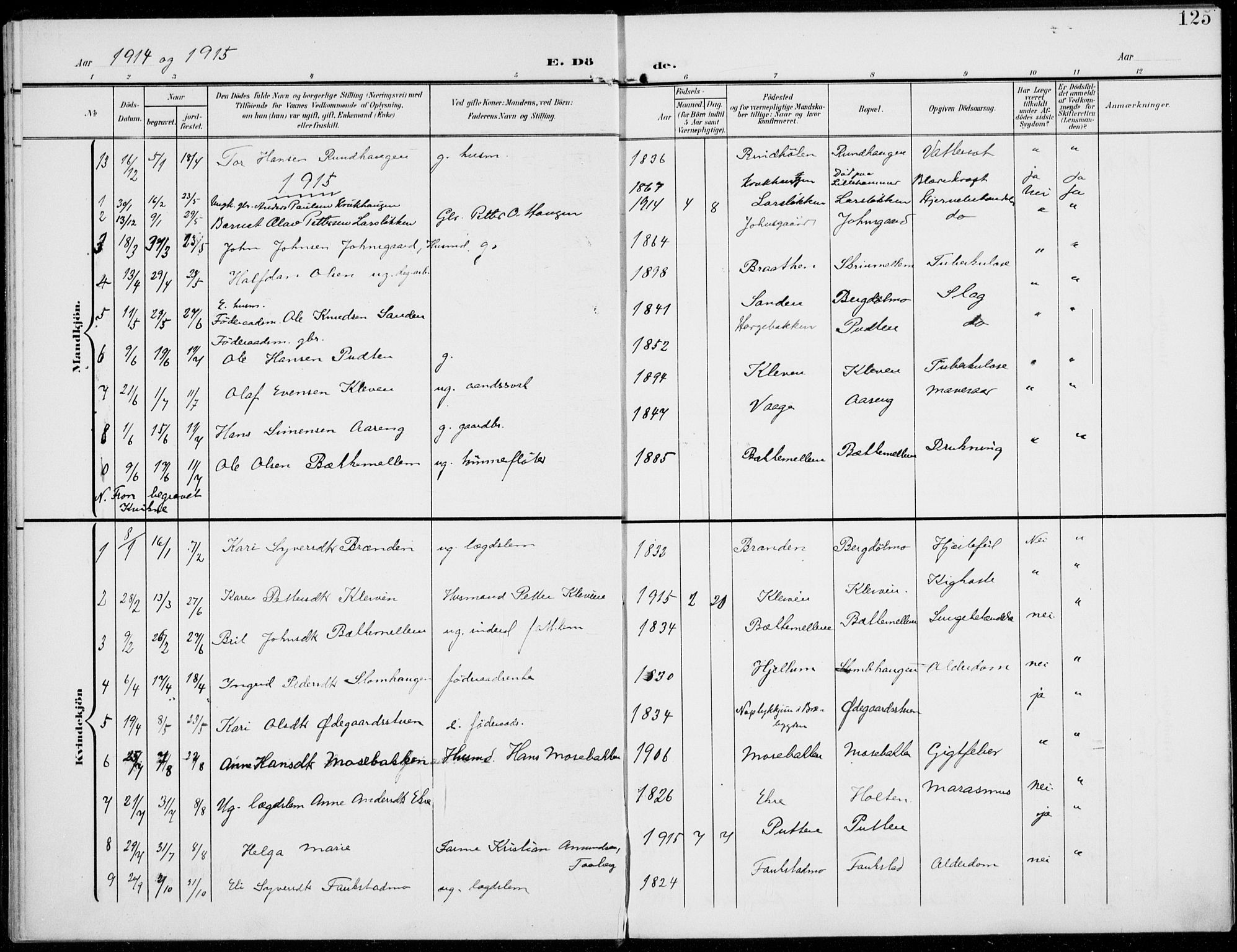 SAH, Sel prestekontor, Parish register (official) no. 1, 1905-1922, p. 125