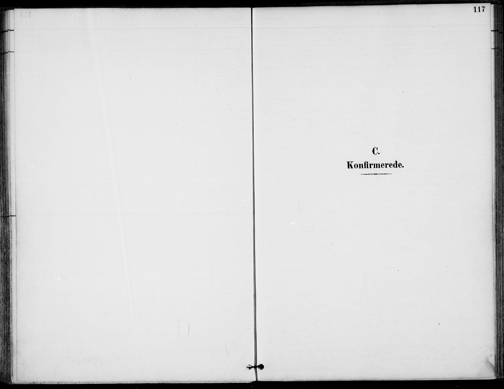 SAT, Ministerialprotokoller, klokkerbøker og fødselsregistre - Nordland, 825/L0362: Parish register (official) no. 825A16, 1886-1908, p. 117