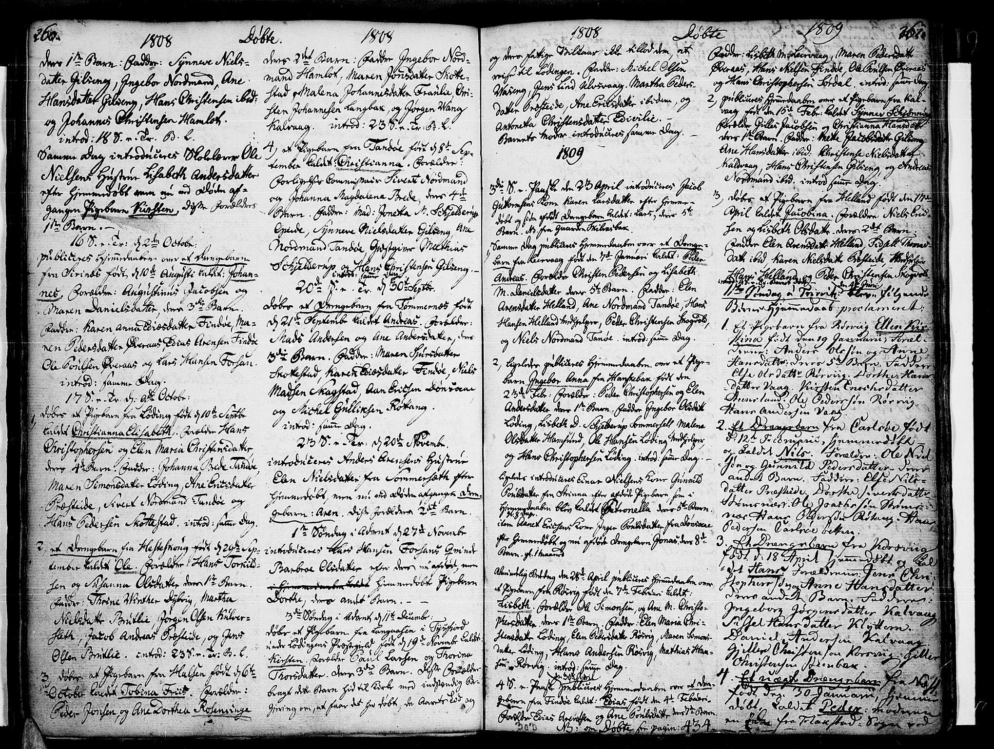 SAT, Ministerialprotokoller, klokkerbøker og fødselsregistre - Nordland, 859/L0841: Parish register (official) no. 859A01, 1766-1821, p. 260-261