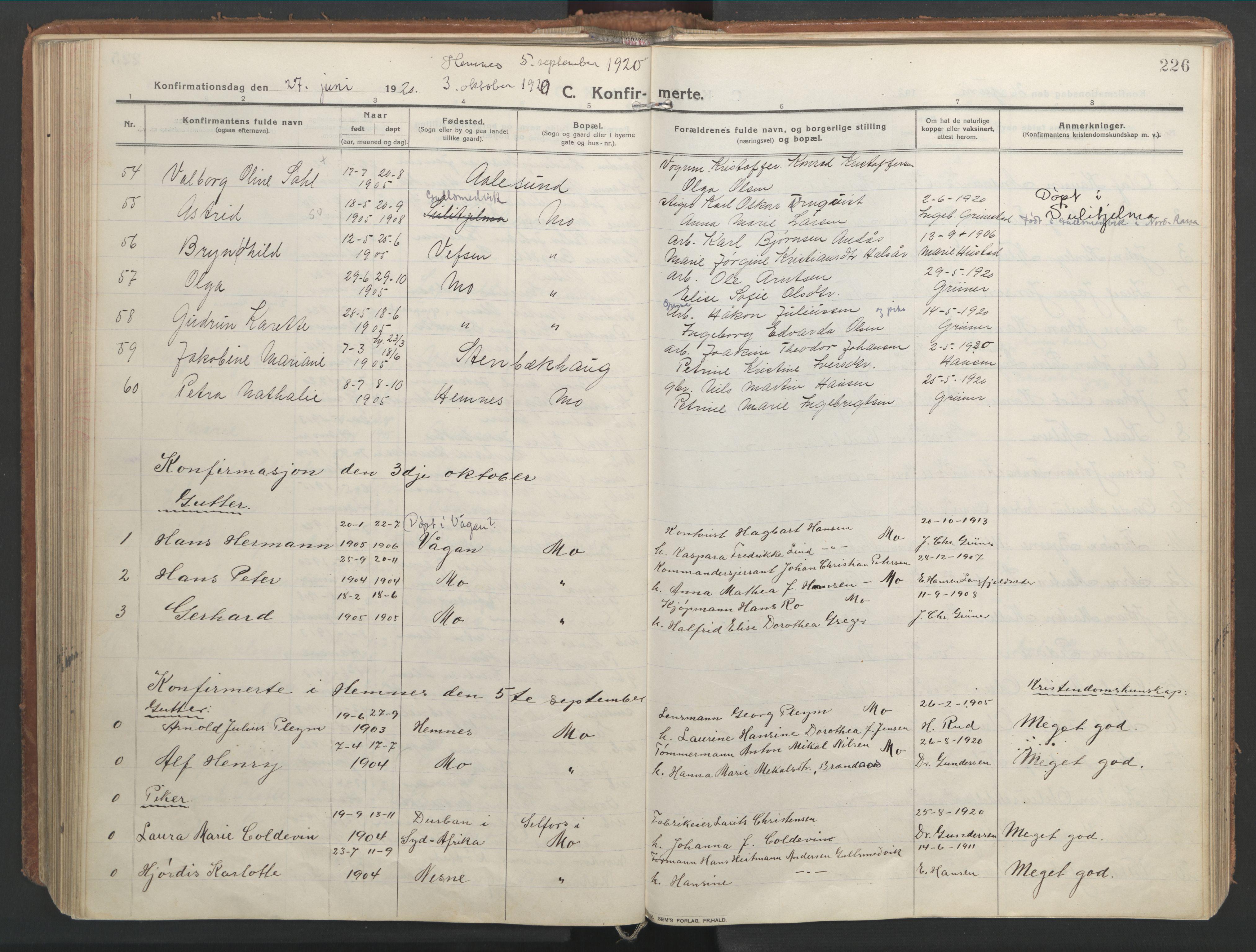 SAT, Ministerialprotokoller, klokkerbøker og fødselsregistre - Nordland, 827/L0404: Parish register (official) no. 827A16, 1912-1925, p. 226