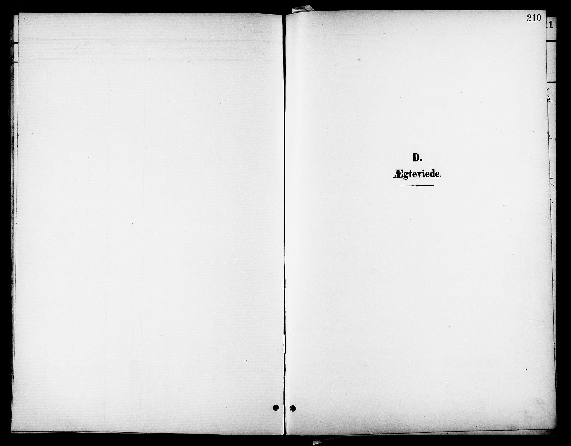 SAT, Ministerialprotokoller, klokkerbøker og fødselsregistre - Nordland, 801/L0033: Parish register (copy) no. 801C08, 1898-1910, p. 210