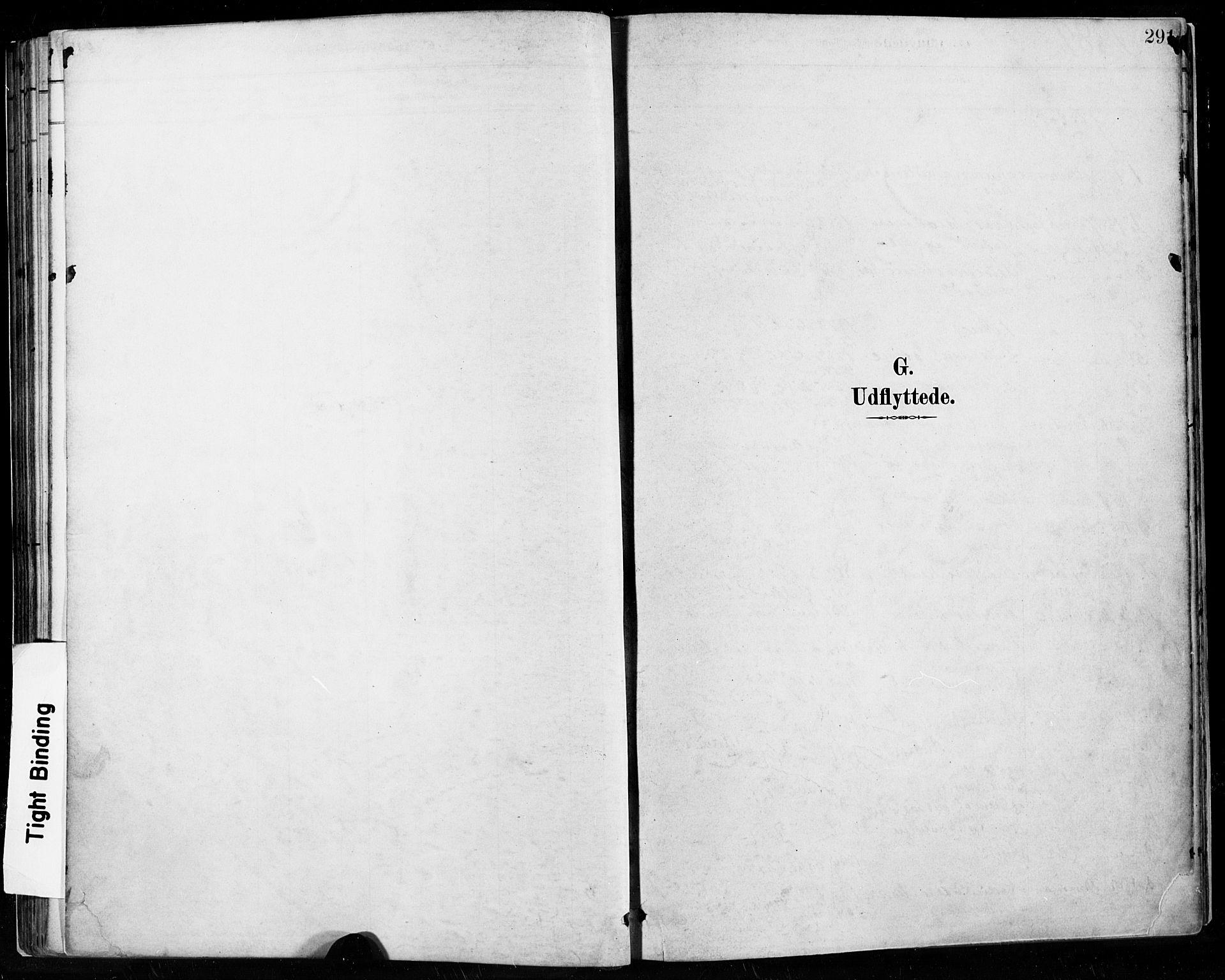 SAST, Høyland sokneprestkontor, 30BA/L0013: Parish register (official) no. A 13.2, 1889-1898, p. 291