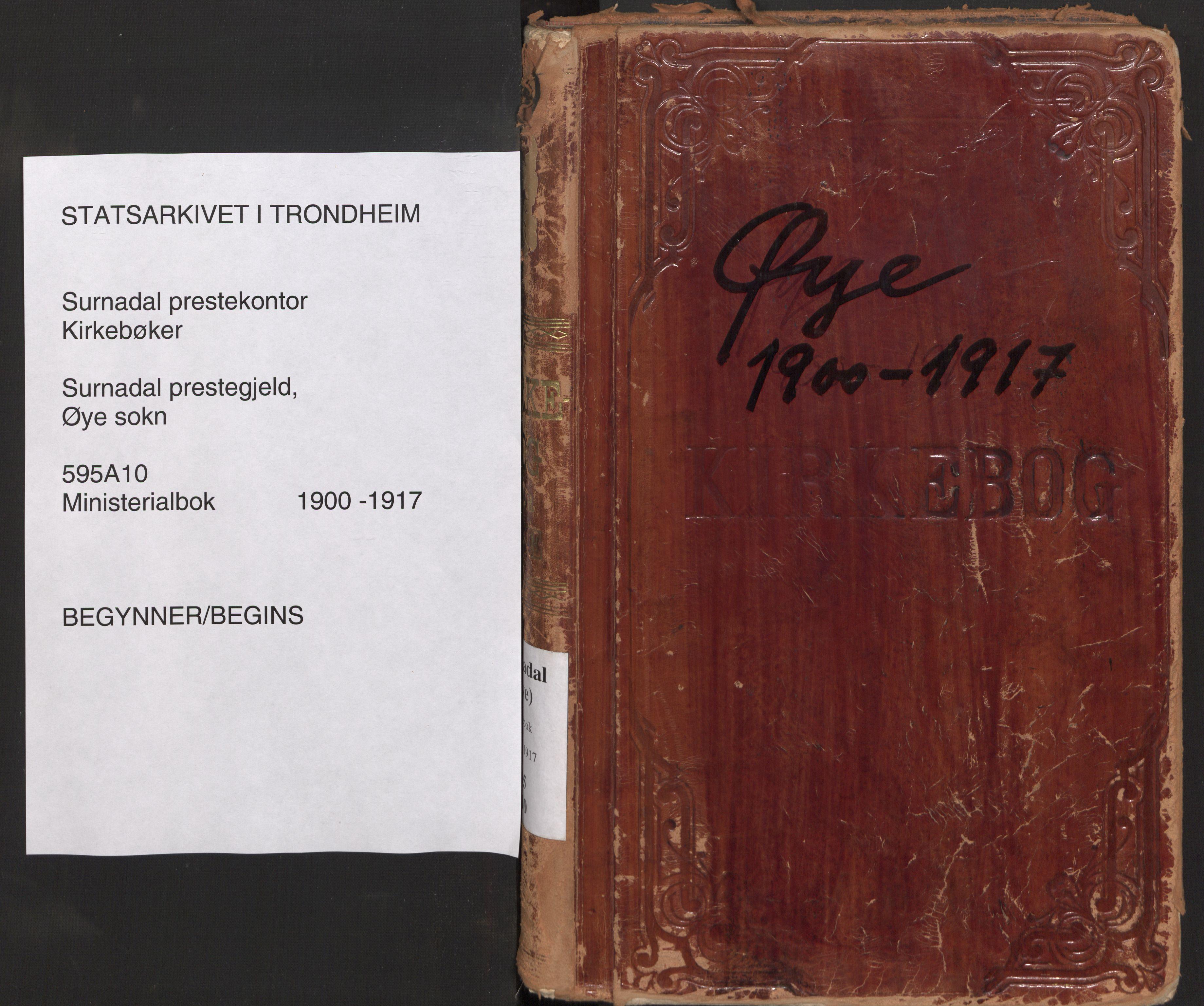 SAT, Ministerialprotokoller, klokkerbøker og fødselsregistre - Møre og Romsdal, 595/L1048: Parish register (official) no. 595A10, 1900-1917