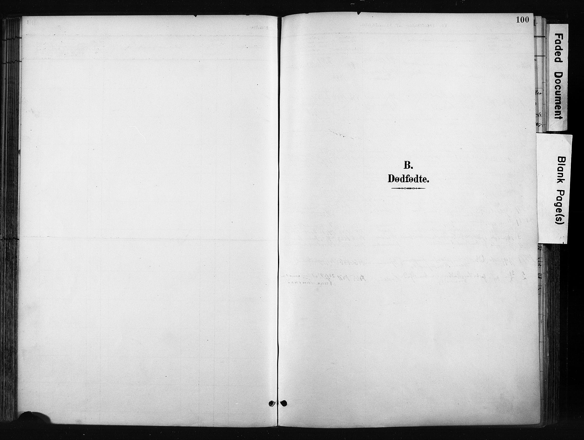 SAH, Gran prestekontor, Parish register (official) no. 17, 1889-1897, p. 100