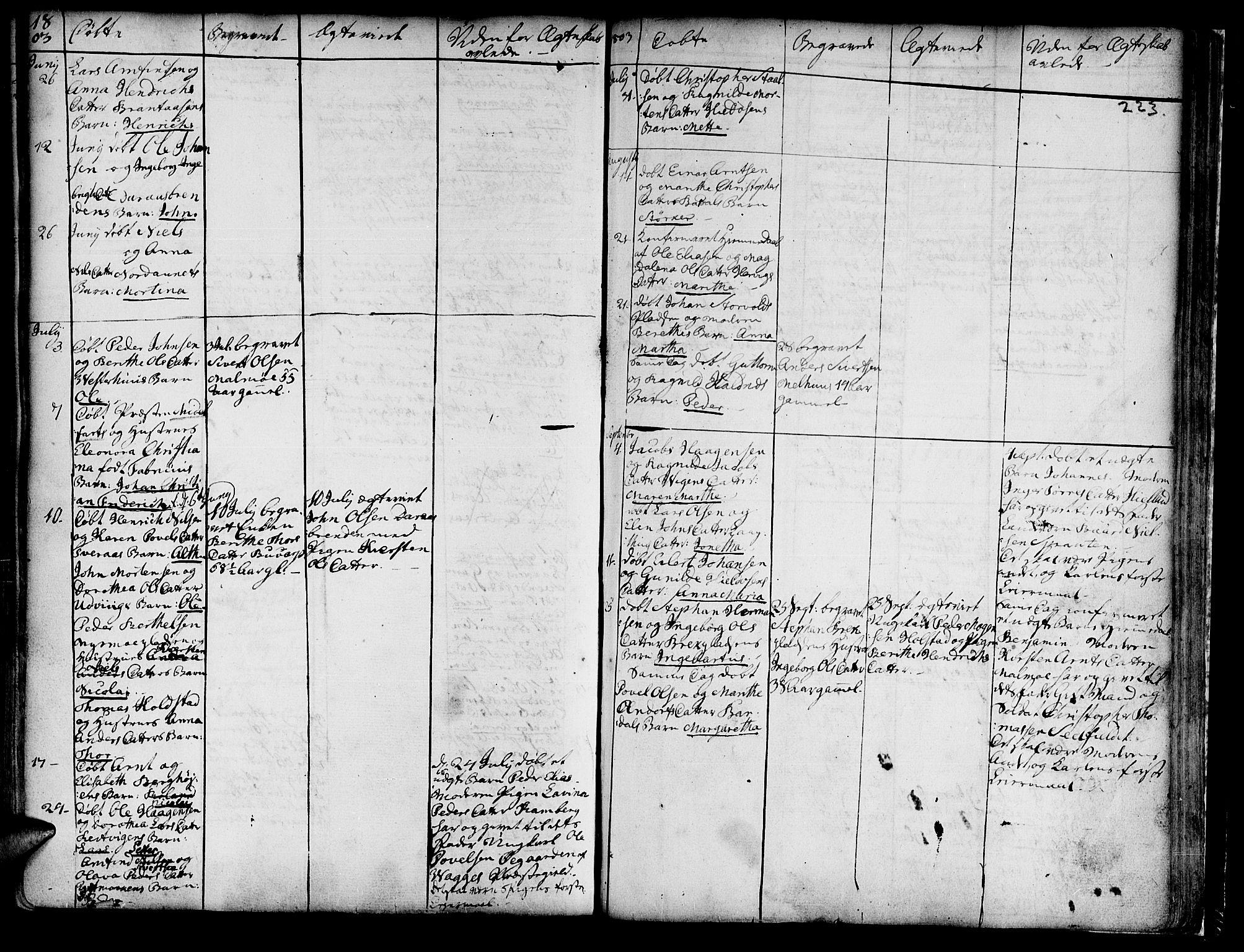 SAT, Ministerialprotokoller, klokkerbøker og fødselsregistre - Nord-Trøndelag, 741/L0385: Parish register (official) no. 741A01, 1722-1815, p. 223