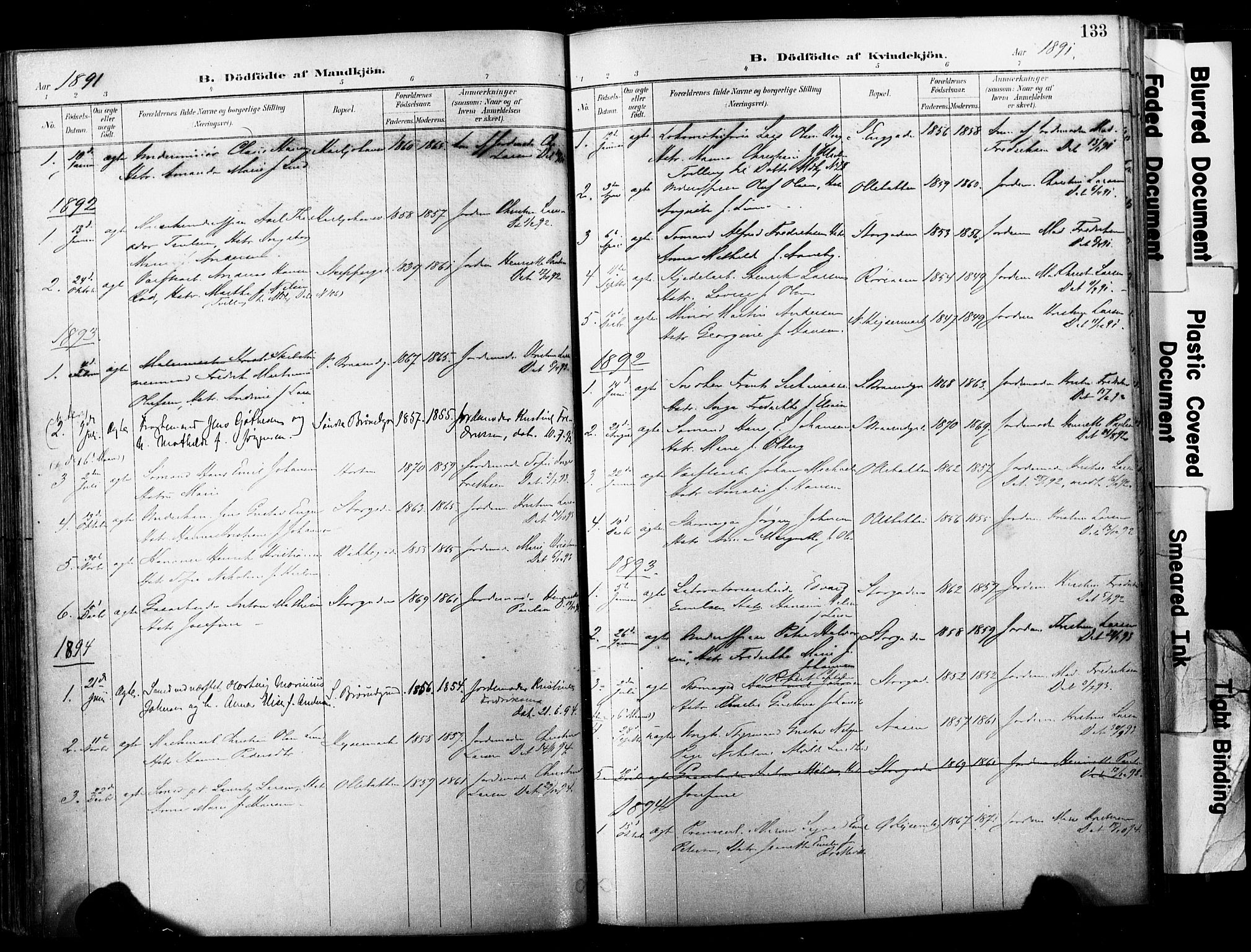 SAKO, Horten kirkebøker, F/Fa/L0004: Parish register (official) no. 4, 1888-1895, p. 133
