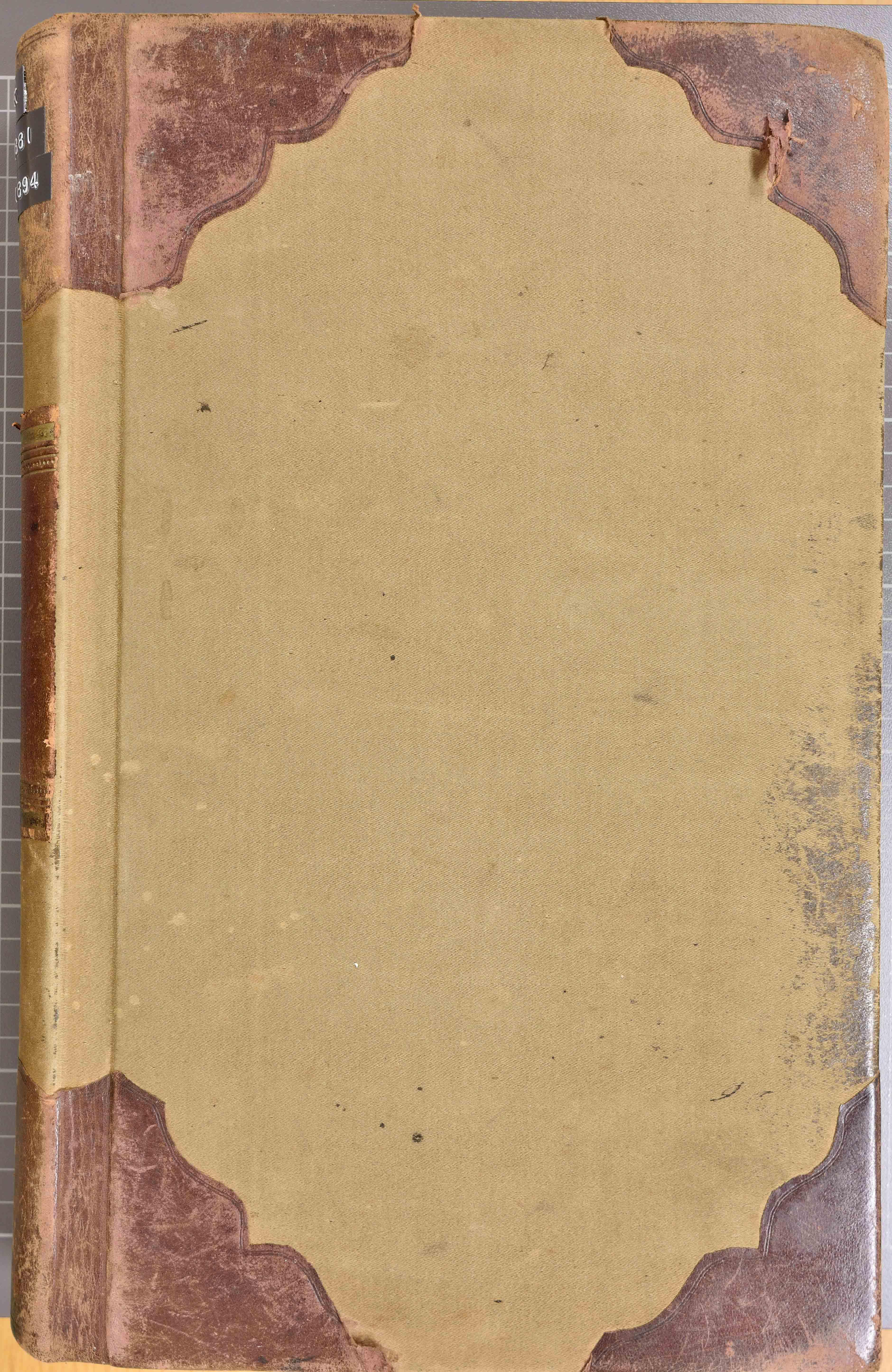 KVT, Vestre Toten kommunearkiv*, -: Formannskapsprotokoll, 1881-1894