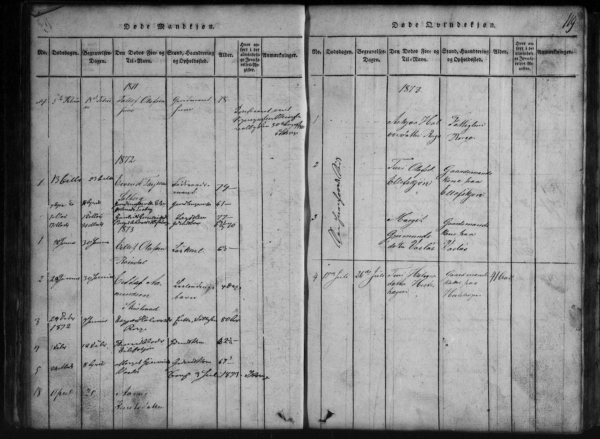 SAKO, Rauland kirkebøker, G/Gb/L0001: Parish register (copy) no. II 1, 1815-1886, p. 119