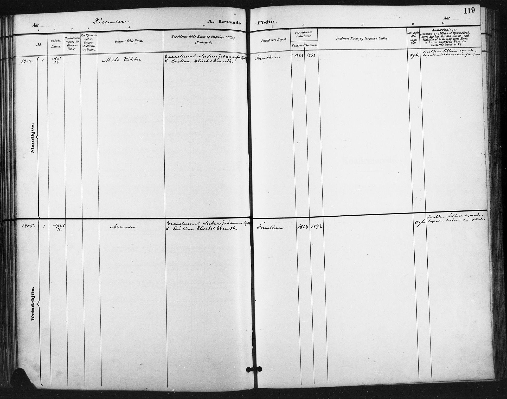 SAH, Vestre Gausdal prestekontor, Parish register (copy) no. 3, 1896-1925, p. 119