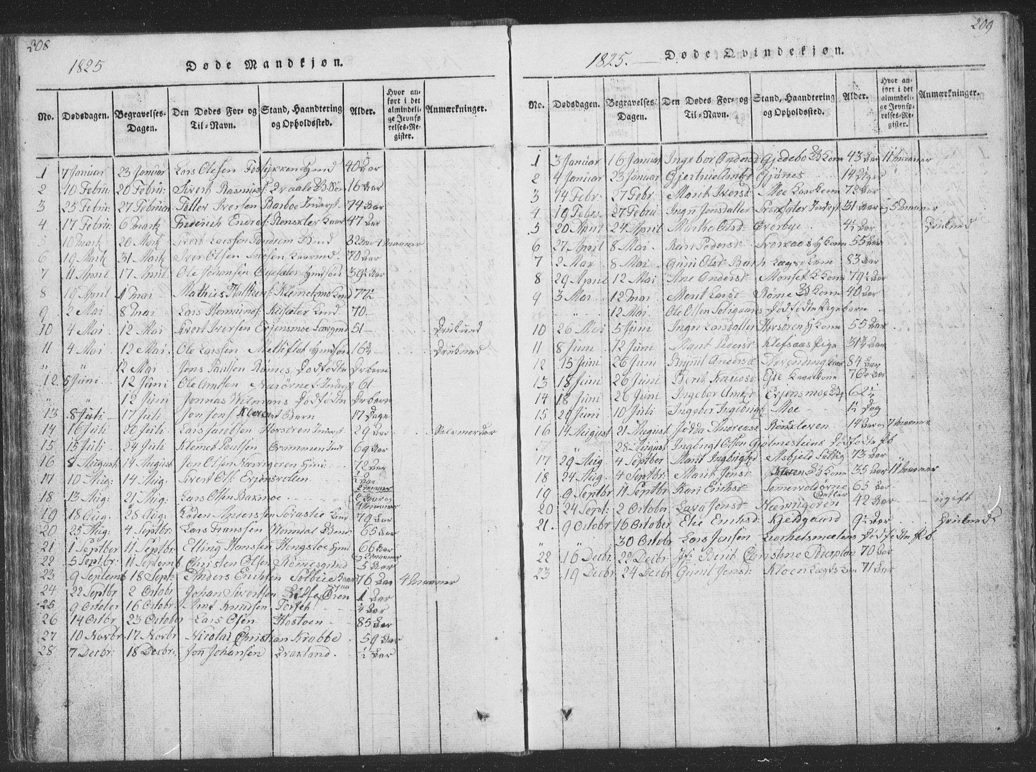 SAT, Ministerialprotokoller, klokkerbøker og fødselsregistre - Sør-Trøndelag, 668/L0816: Parish register (copy) no. 668C05, 1816-1893, p. 208-209