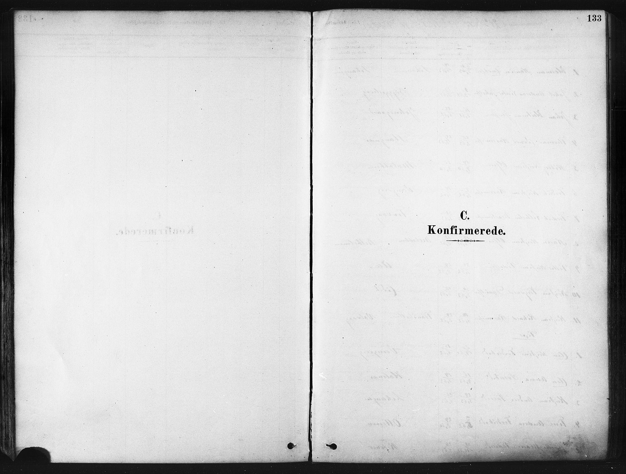 SATØ, Tranøy sokneprestkontor, I/Ia/Iaa/L0009kirke: Parish register (official) no. 9, 1878-1904, p. 133