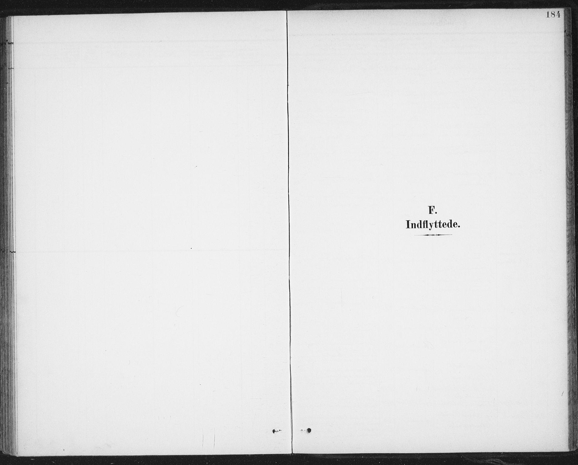 SAT, Ministerialprotokoller, klokkerbøker og fødselsregistre - Nordland, 899/L1437: Parish register (official) no. 899A05, 1897-1908, p. 184