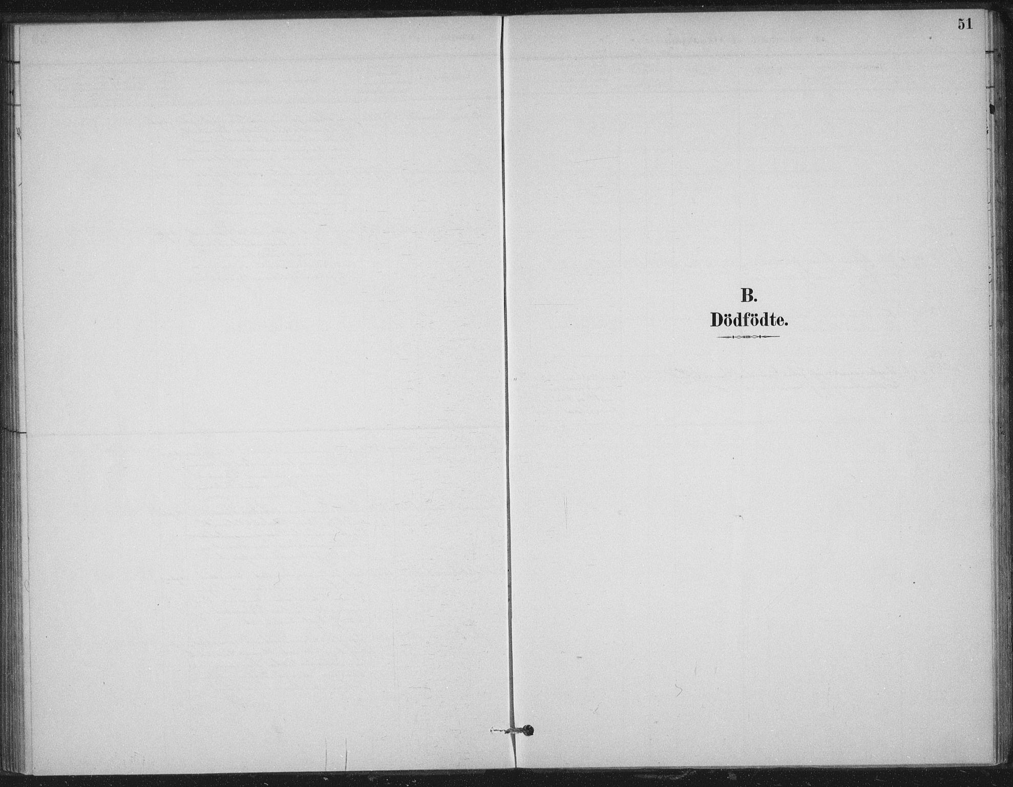 SAT, Ministerialprotokoller, klokkerbøker og fødselsregistre - Nord-Trøndelag, 702/L0023: Parish register (official) no. 702A01, 1883-1897, p. 51