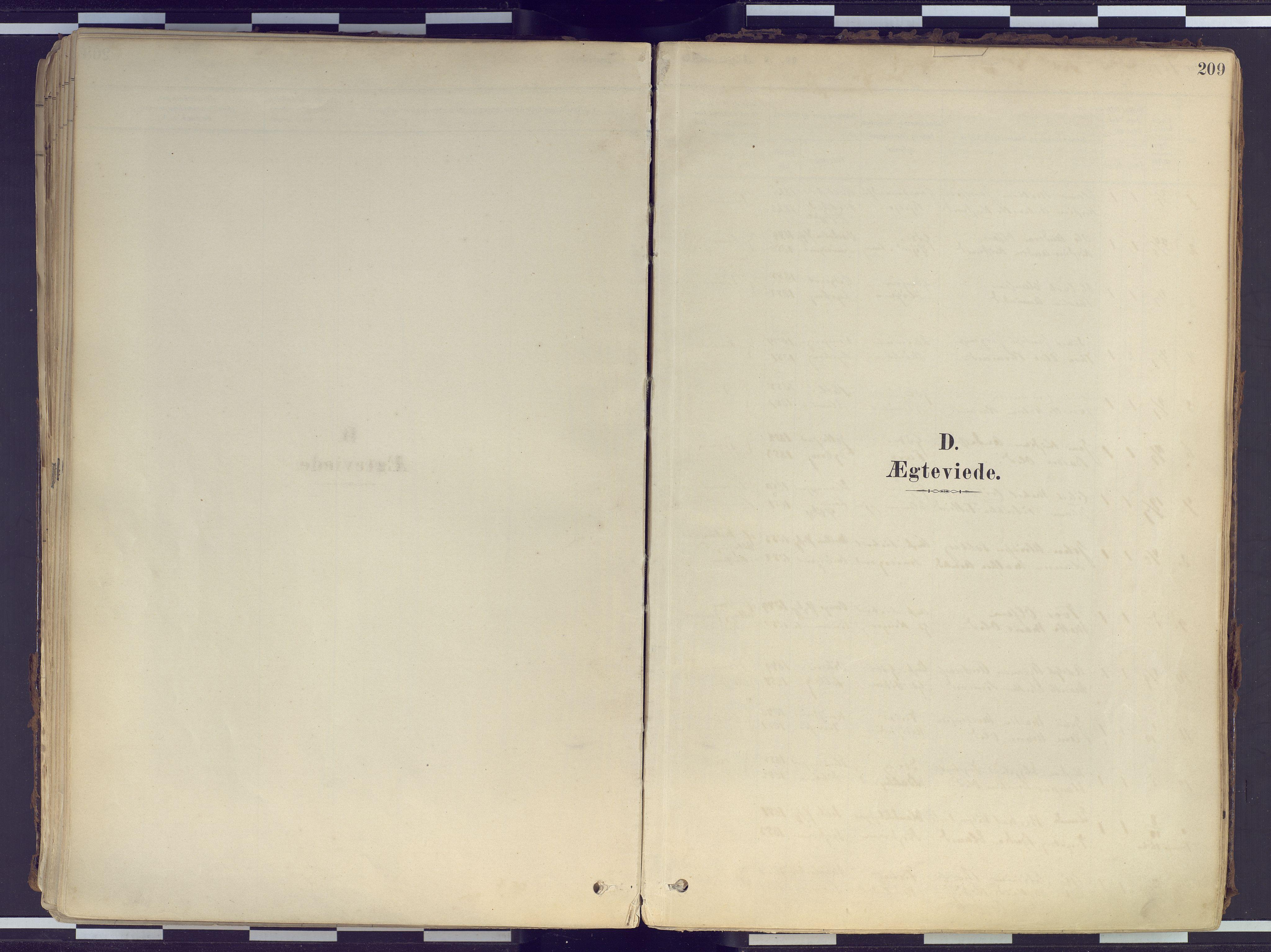 SATØ, Tranøy sokneprestkontor, I/Ia/Iaa/L0010kirke: Parish register (official) no. 10, 1878-1904, p. 209