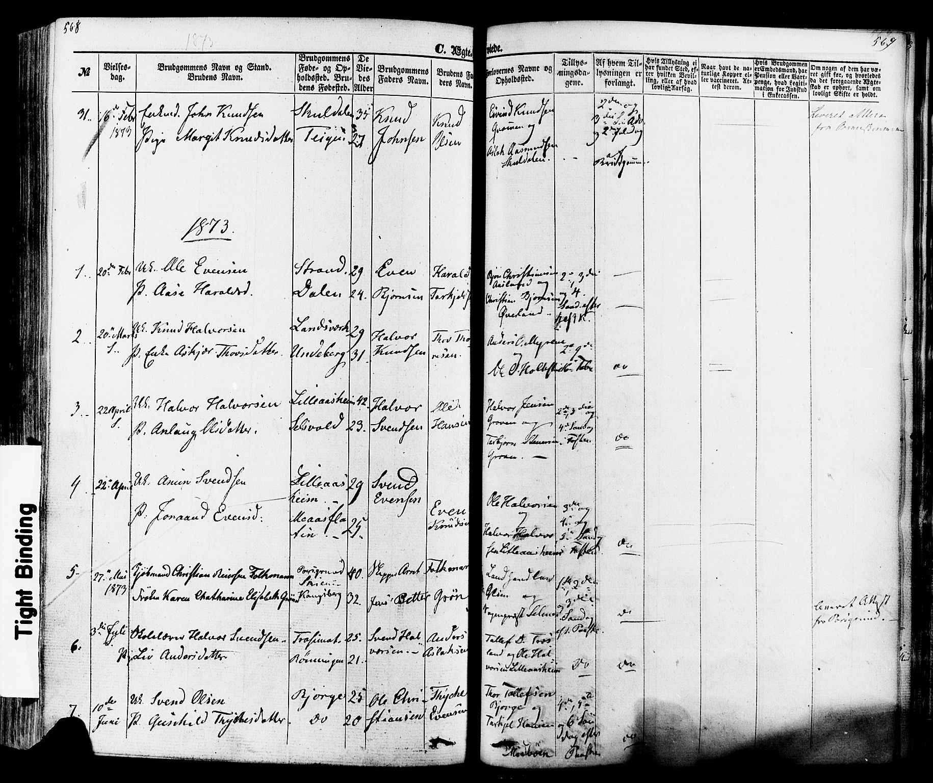 SAKO, Seljord kirkebøker, F/Fa/L0013: Parish register (official) no. I 13, 1866-1876, p. 568-569