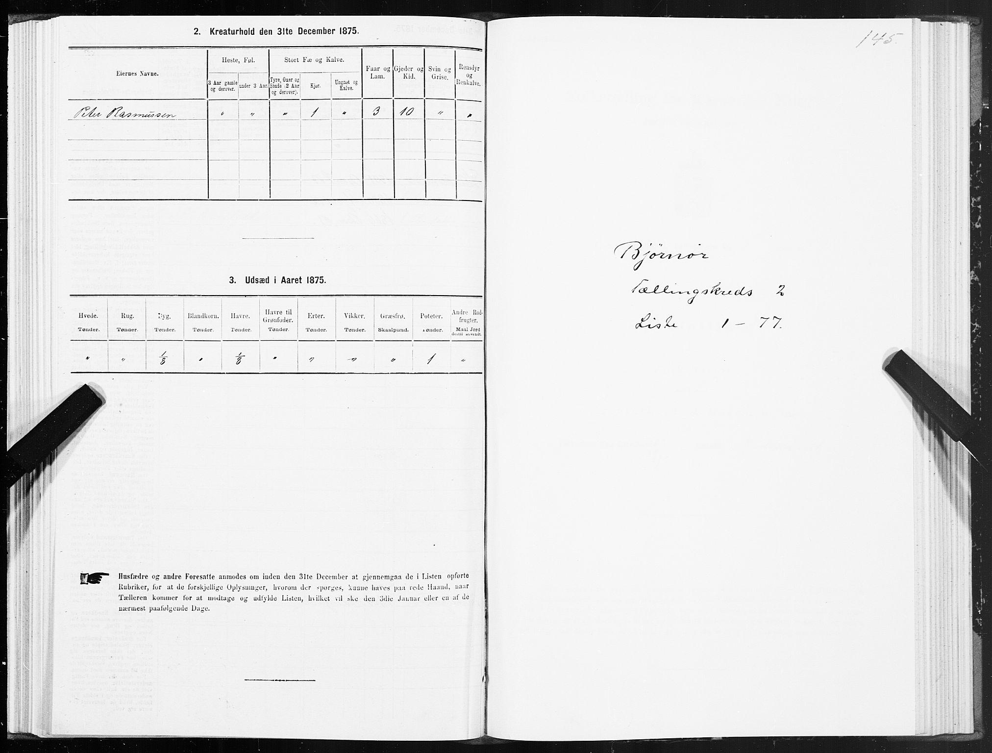 SAT, 1875 census for 1632P Bjørnør, 1875, p. 1145