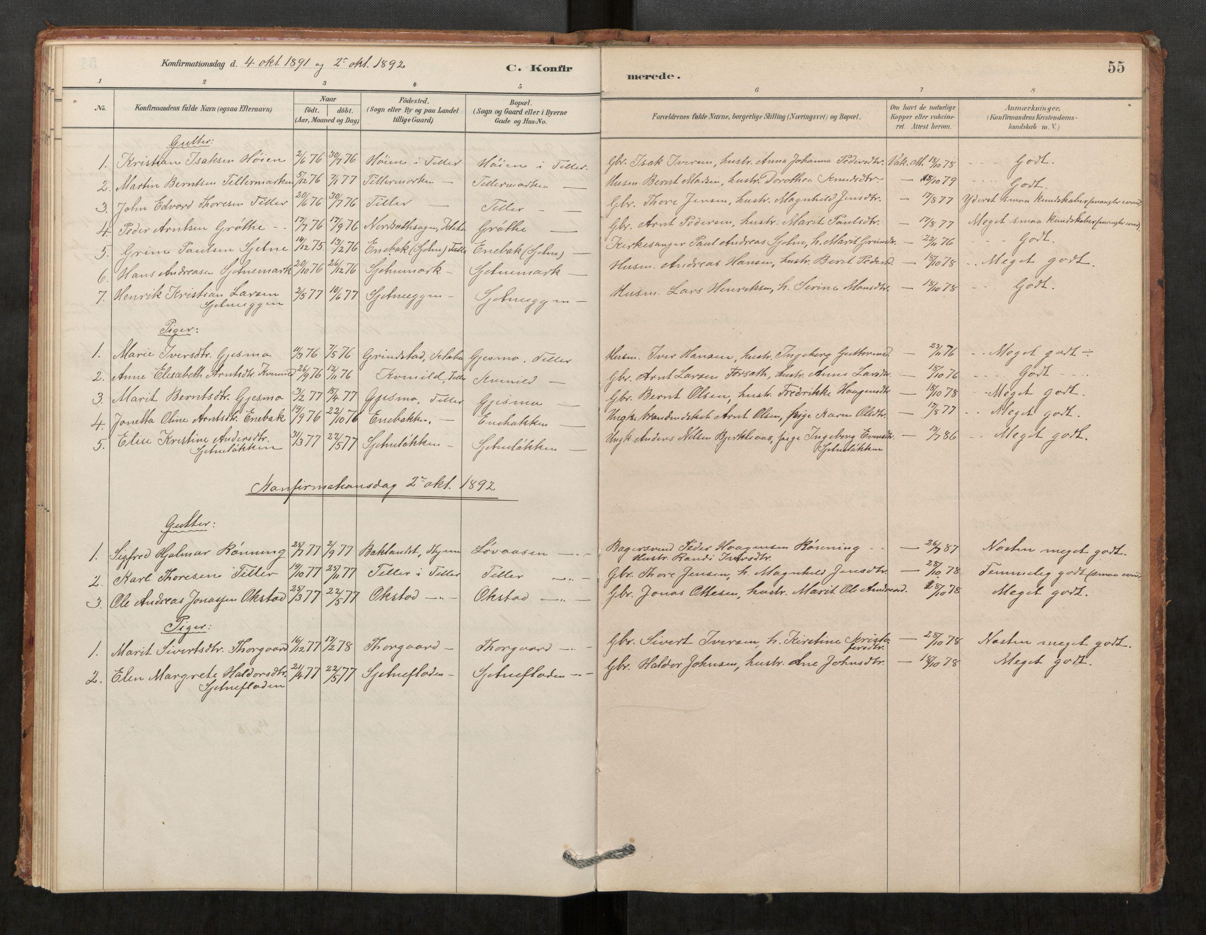 SAT, Klæbu sokneprestkontor, Parish register (official) no. 1, 1880-1900, p. 55