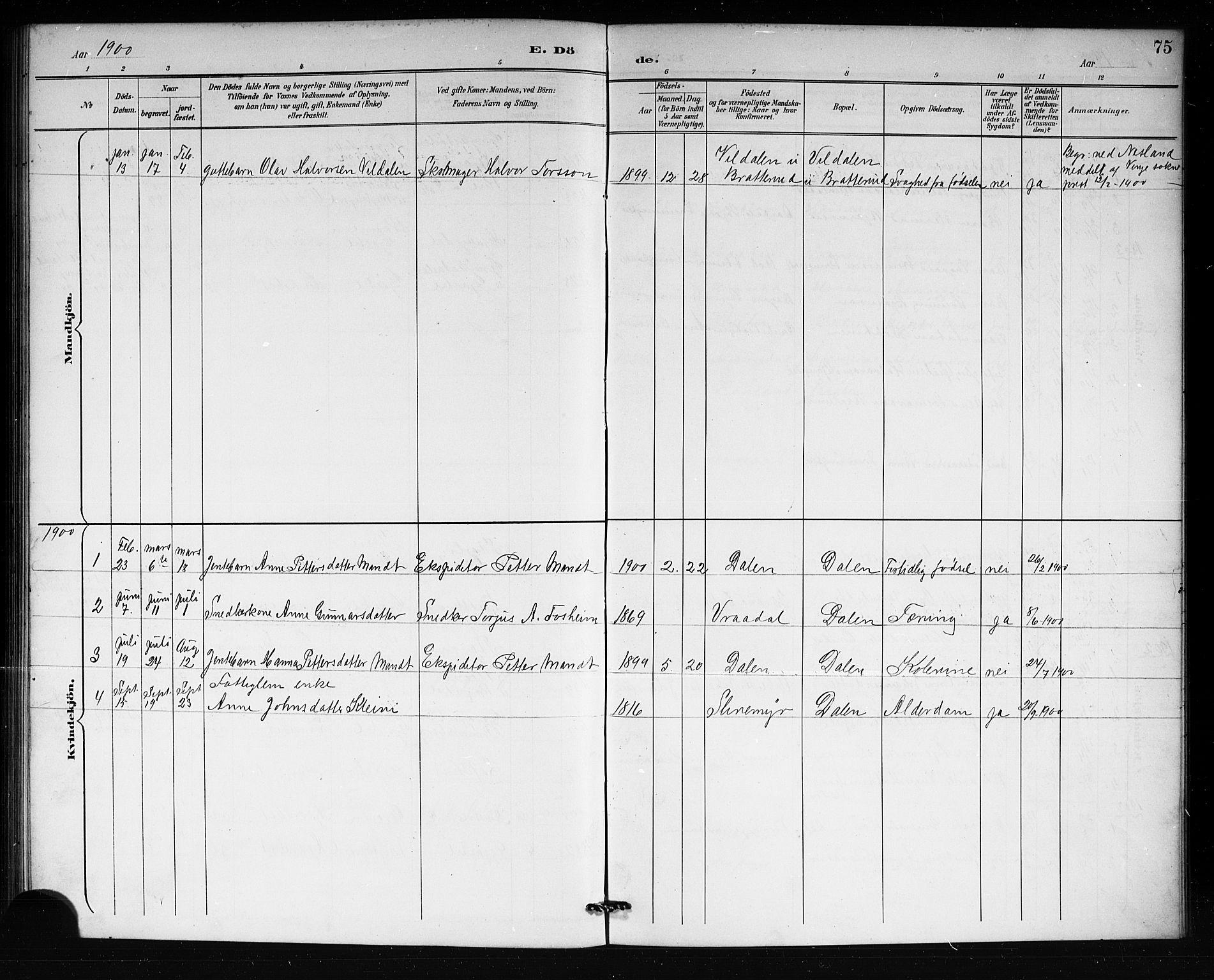 SAKO, Lårdal kirkebøker, G/Gb/L0003: Parish register (copy) no. II 3, 1889-1920, p. 75
