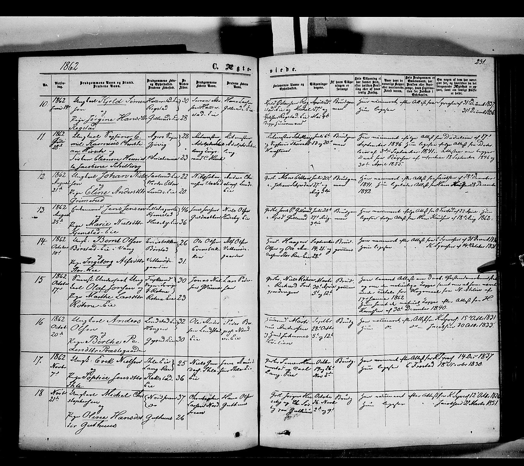 SAH, Stange prestekontor, K/L0013: Parish register (official) no. 13, 1862-1879, p. 231