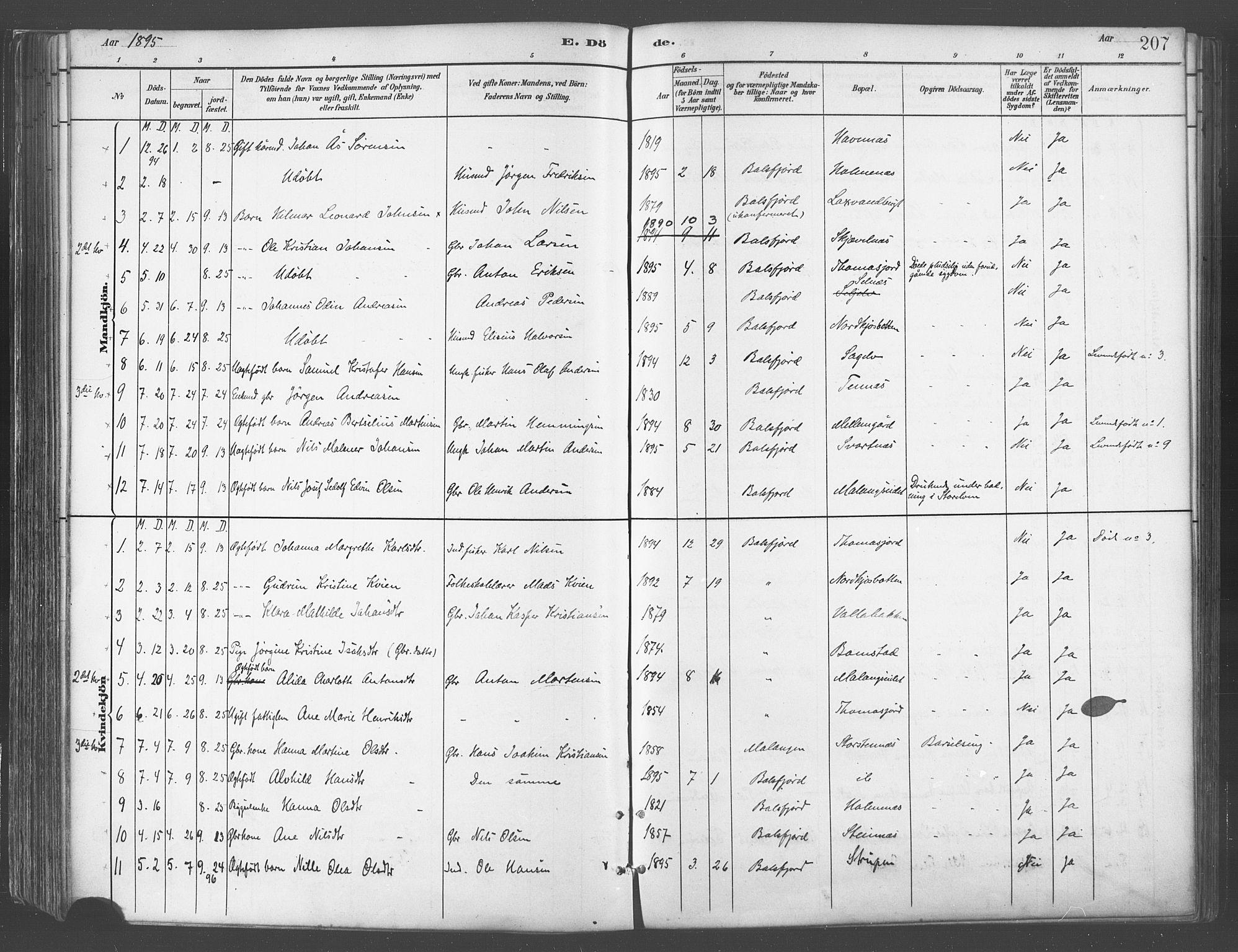 SATØ, Balsfjord sokneprestembete, Parish register (official) no. 5, 1884-1897, p. 207
