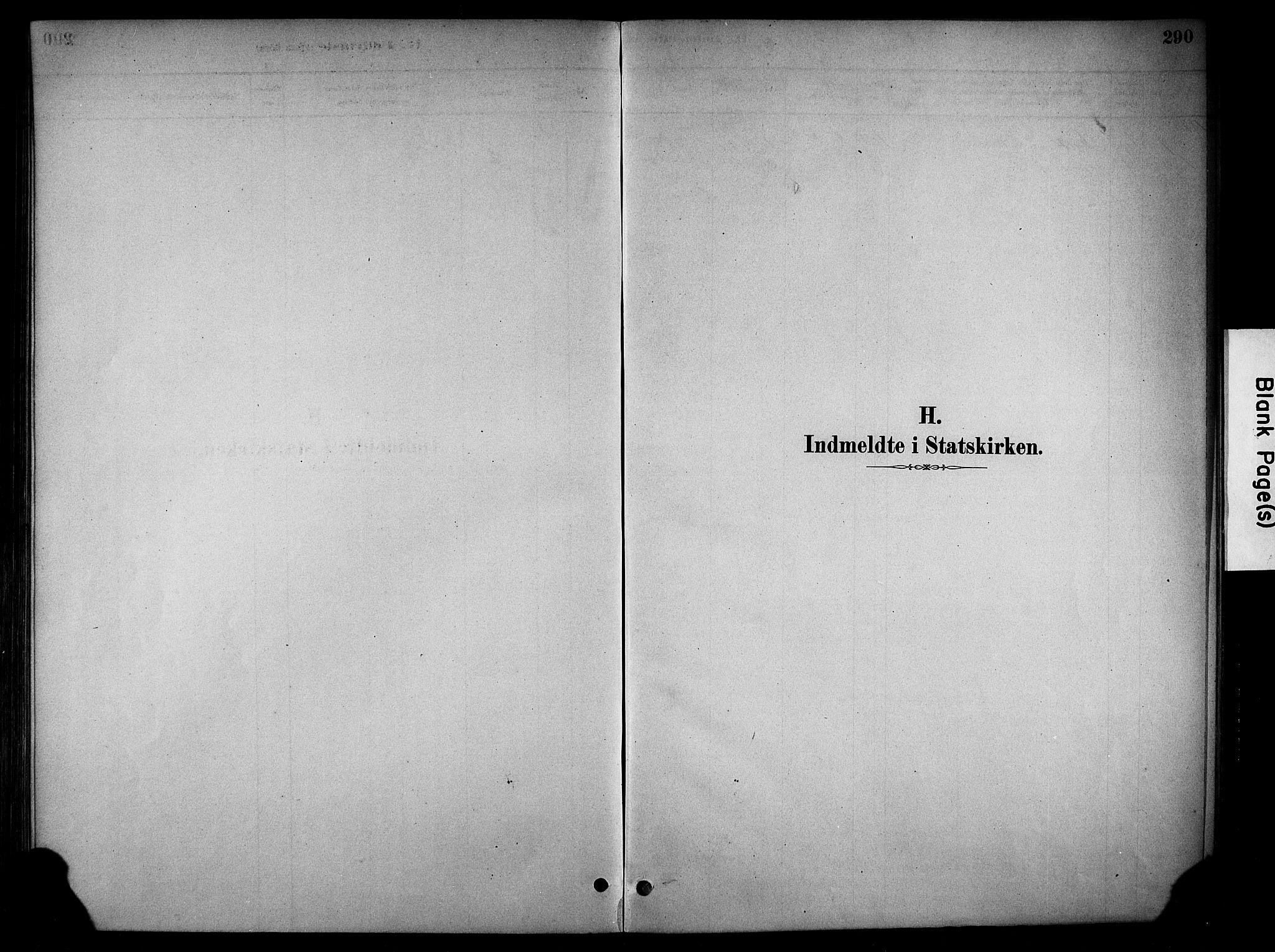 SAH, Stange prestekontor, K/L0018: Parish register (official) no. 18, 1880-1896, p. 290