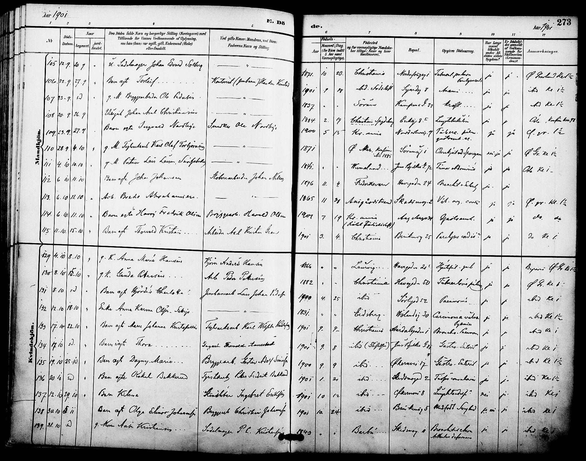 SAO, Kampen prestekontor Kirkebøker, F/Fa/L0008: Parish register (official) no. I 8, 1892-1902, p. 273