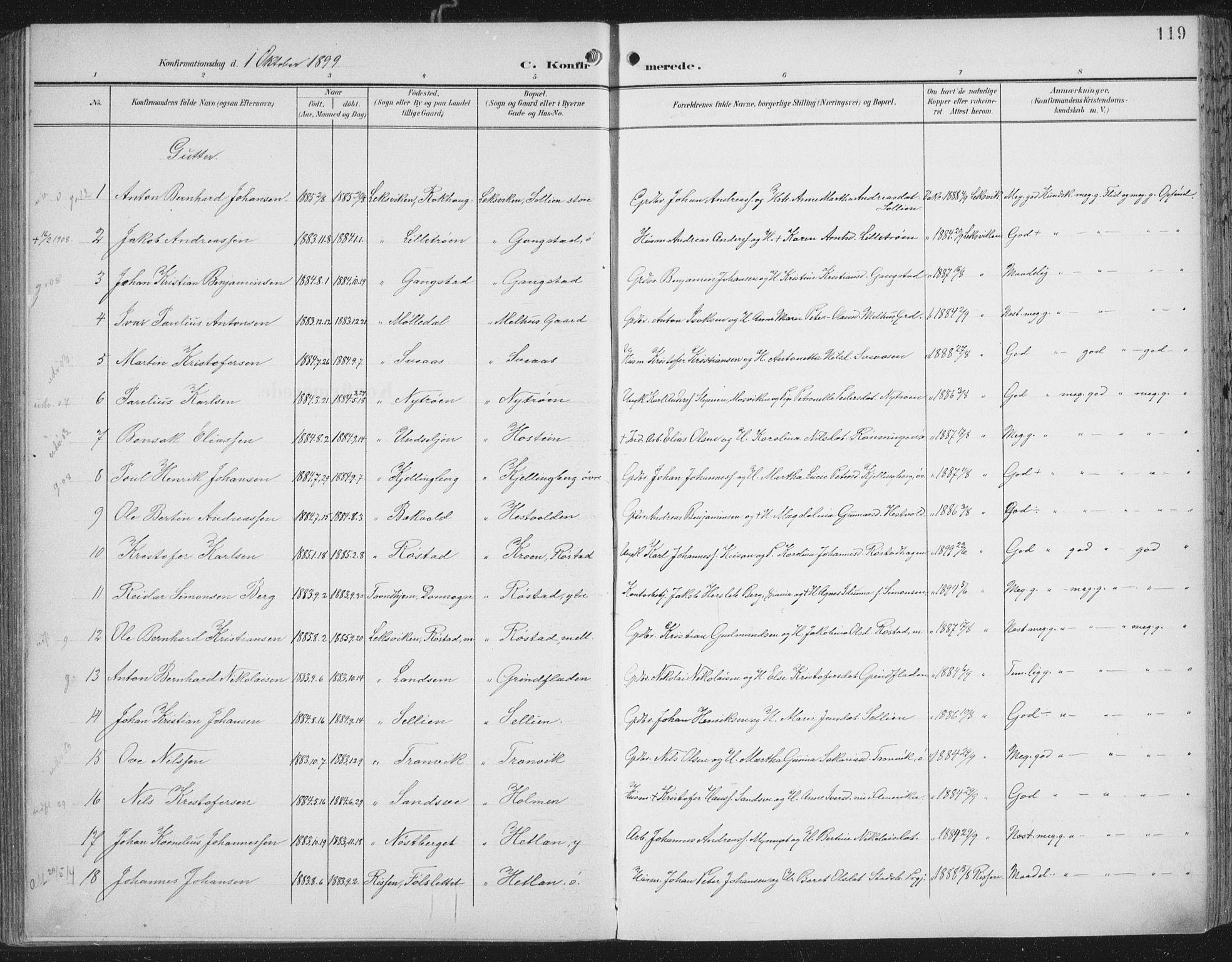 SAT, Ministerialprotokoller, klokkerbøker og fødselsregistre - Nord-Trøndelag, 701/L0011: Parish register (official) no. 701A11, 1899-1915, p. 119