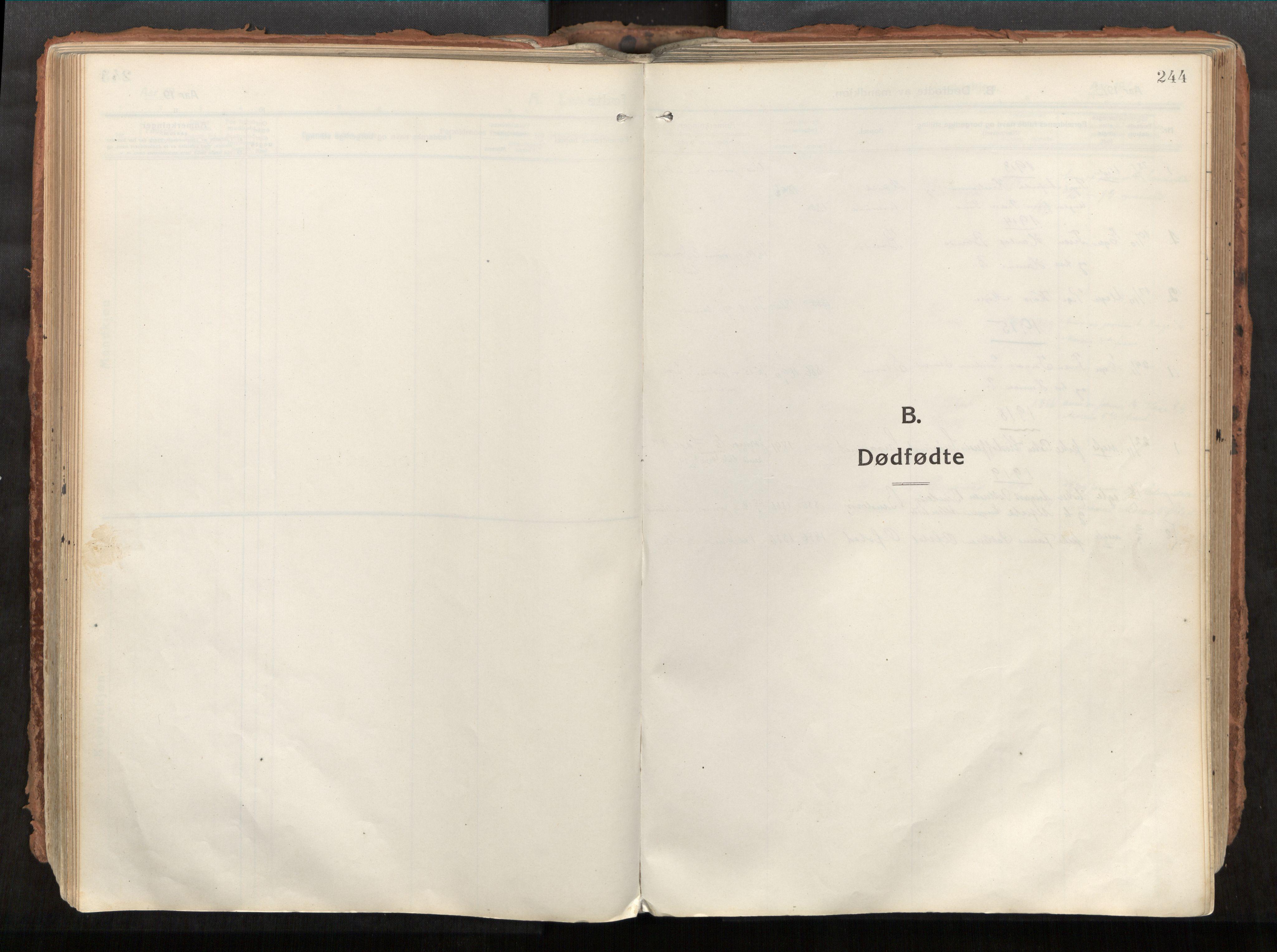 SAT, Vikna sokneprestkontor*, Parish register (official) no. 1, 1913-1934, p. 244
