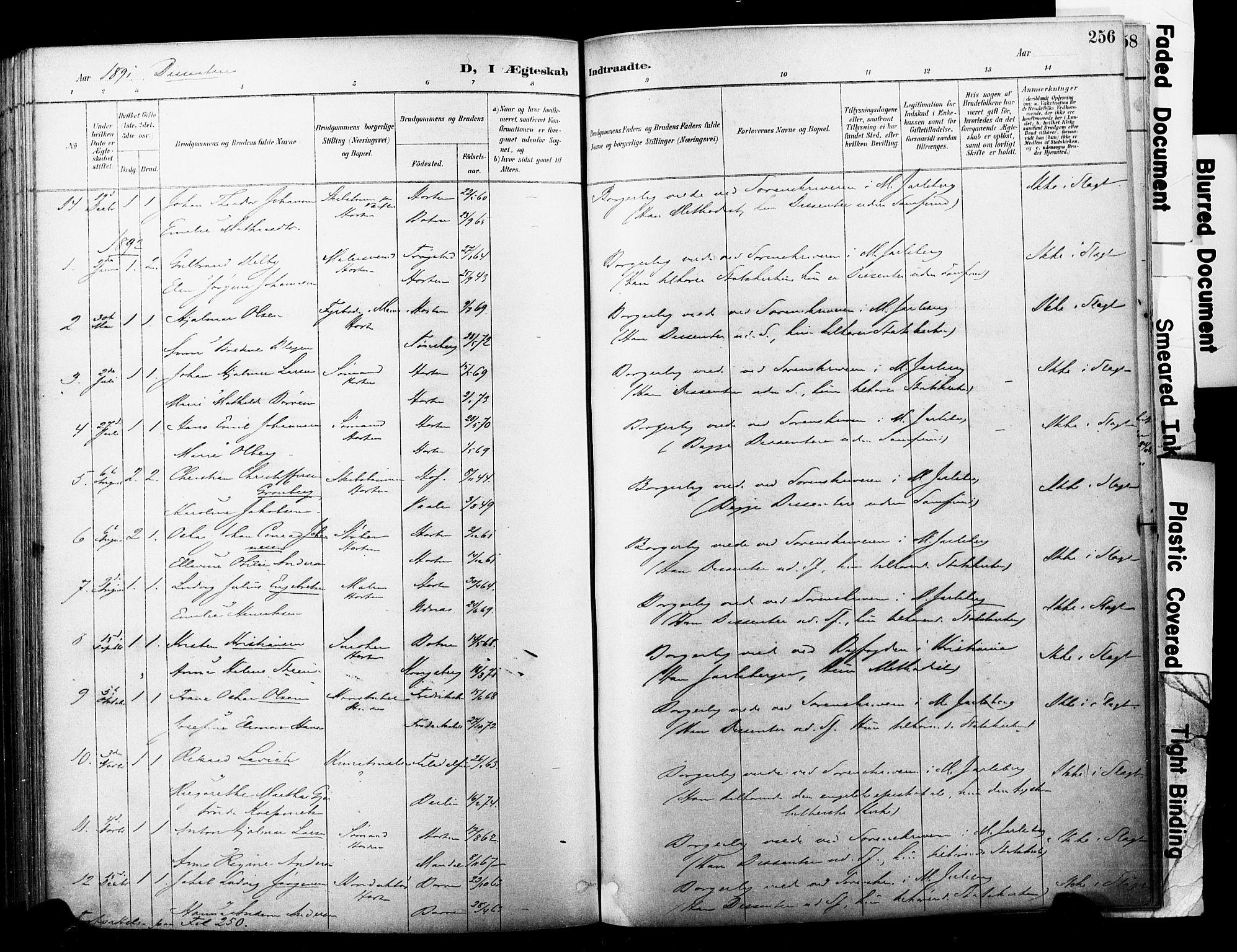 SAKO, Horten kirkebøker, F/Fa/L0004: Parish register (official) no. 4, 1888-1895, p. 256