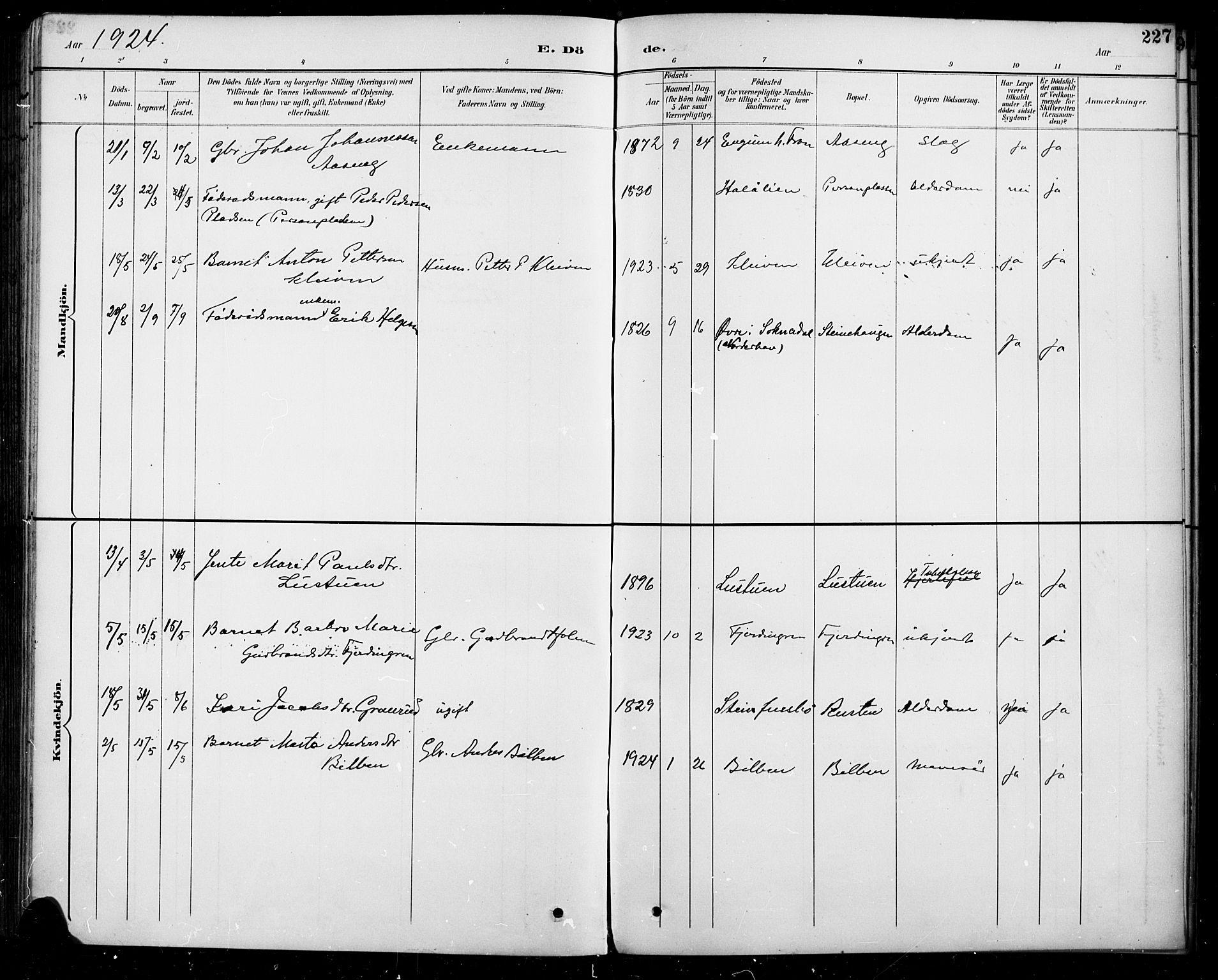 SAH, Sel prestekontor, Parish register (copy) no. 5, 1894-1923, p. 227