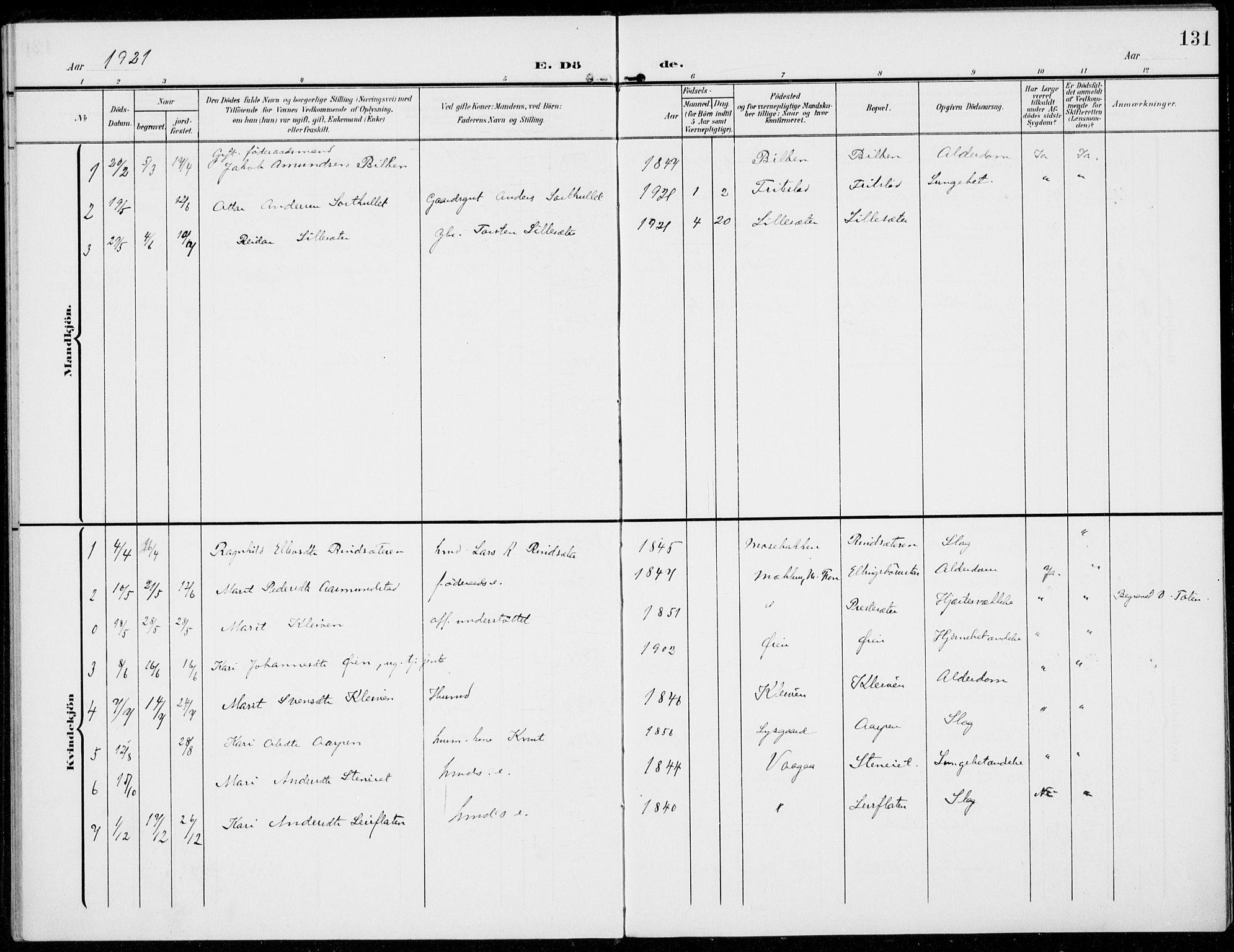 SAH, Sel prestekontor, Parish register (official) no. 1, 1905-1922, p. 131