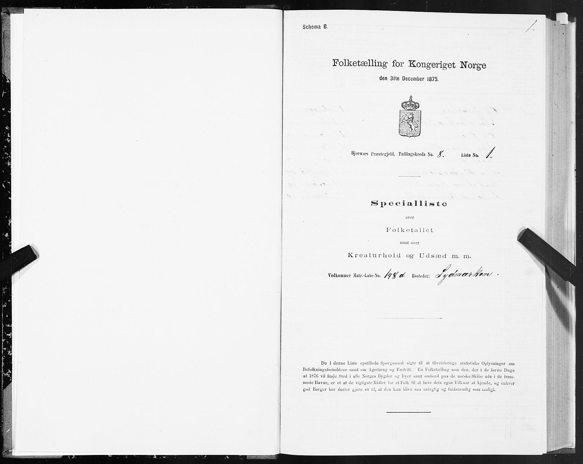 SAT, 1875 census for 1632P Bjørnør, 1875, p. 4001