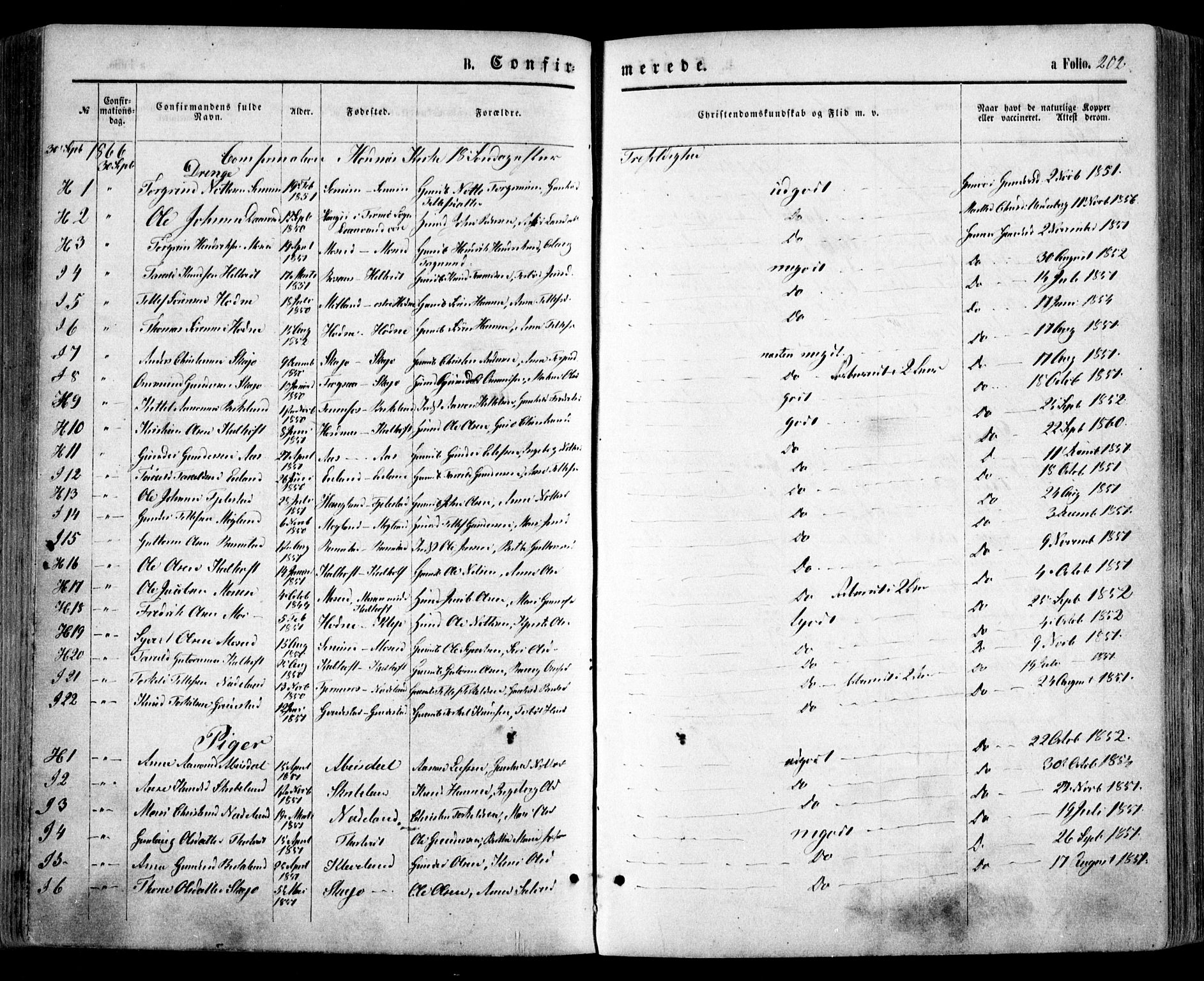 SAK, Evje sokneprestkontor, F/Fa/Faa/L0006: Parish register (official) no. A 6, 1866-1884, p. 202