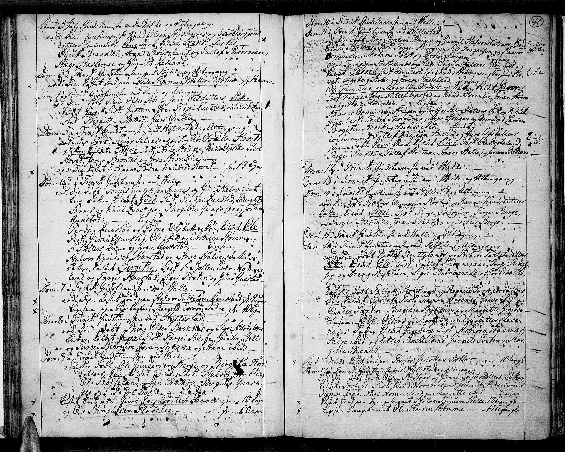 SAK, Valle sokneprestkontor, F/Fa/Fac/L0003: Parish register (official) no. A 3, 1776-1790, p. 41