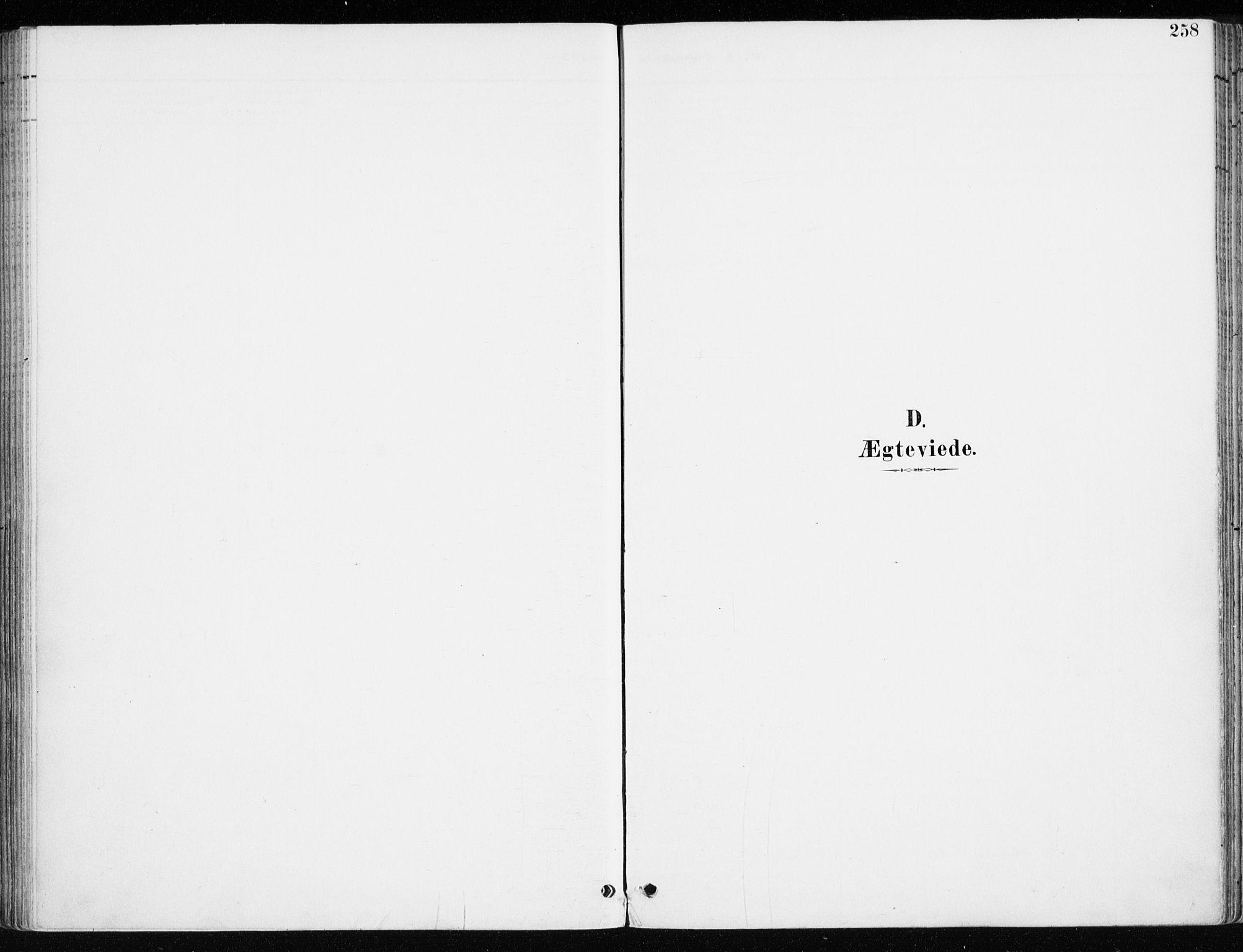 SAH, Løten prestekontor, K/Ka/L0010: Parish register (official) no. 10, 1892-1907, p. 258