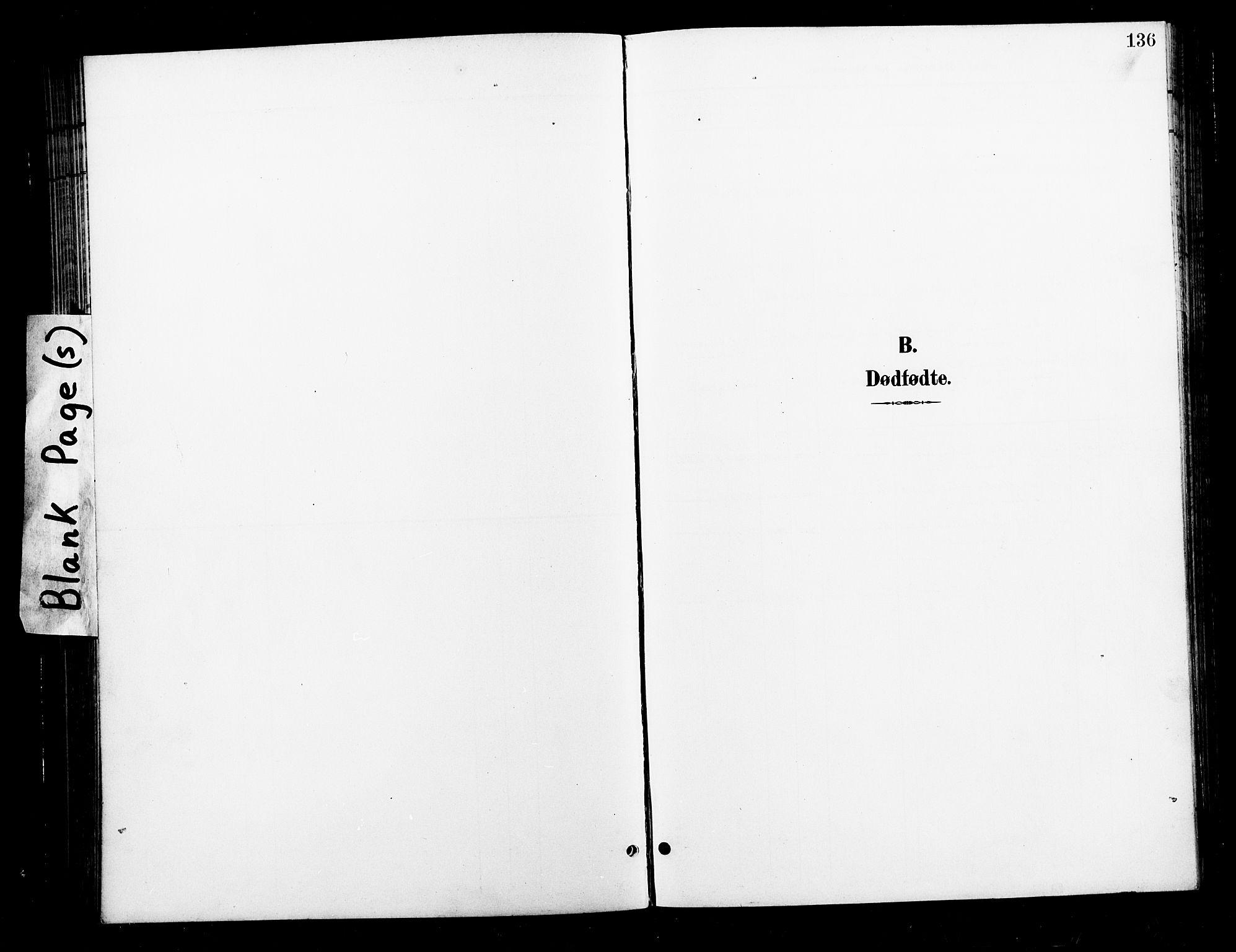 SAT, Ministerialprotokoller, klokkerbøker og fødselsregistre - Nord-Trøndelag, 730/L0302: Parish register (copy) no. 730C05, 1898-1924, p. 136