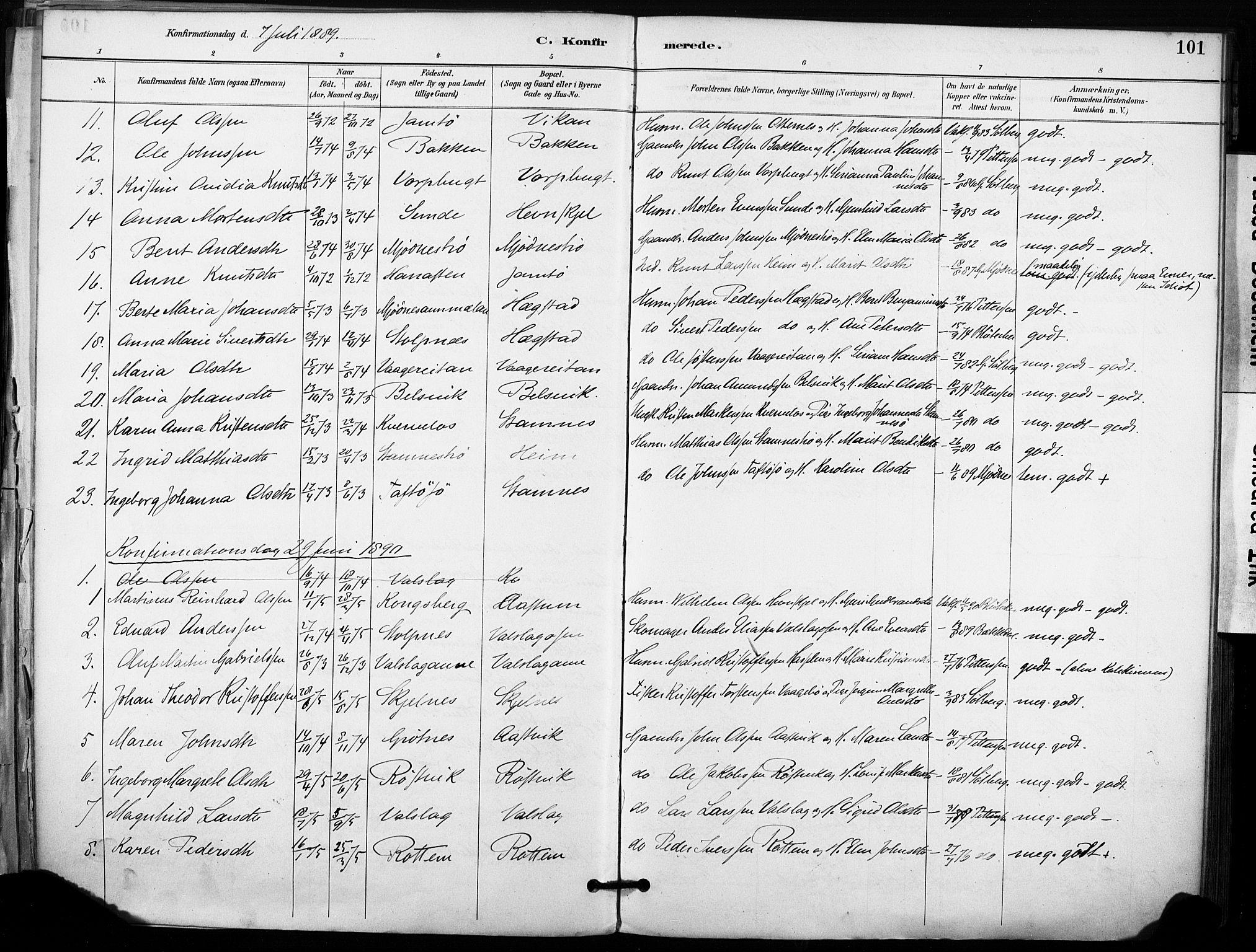 SAT, Ministerialprotokoller, klokkerbøker og fødselsregistre - Sør-Trøndelag, 633/L0518: Parish register (official) no. 633A01, 1884-1906, p. 101