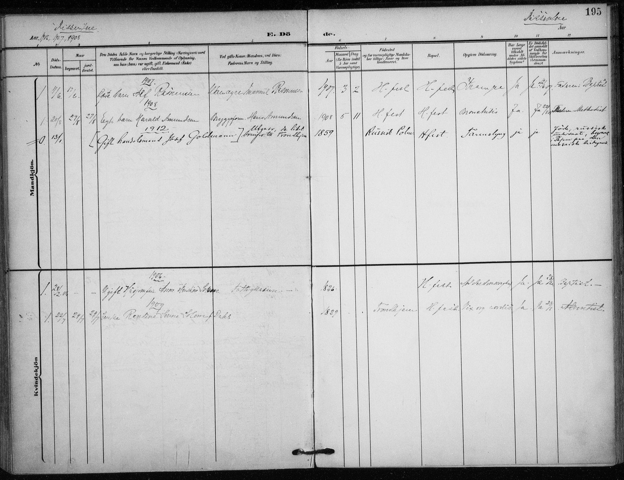 SATØ, Hammerfest sokneprestkontor, H/Ha/L0014.kirke: Parish register (official) no. 14, 1906-1916, p. 195