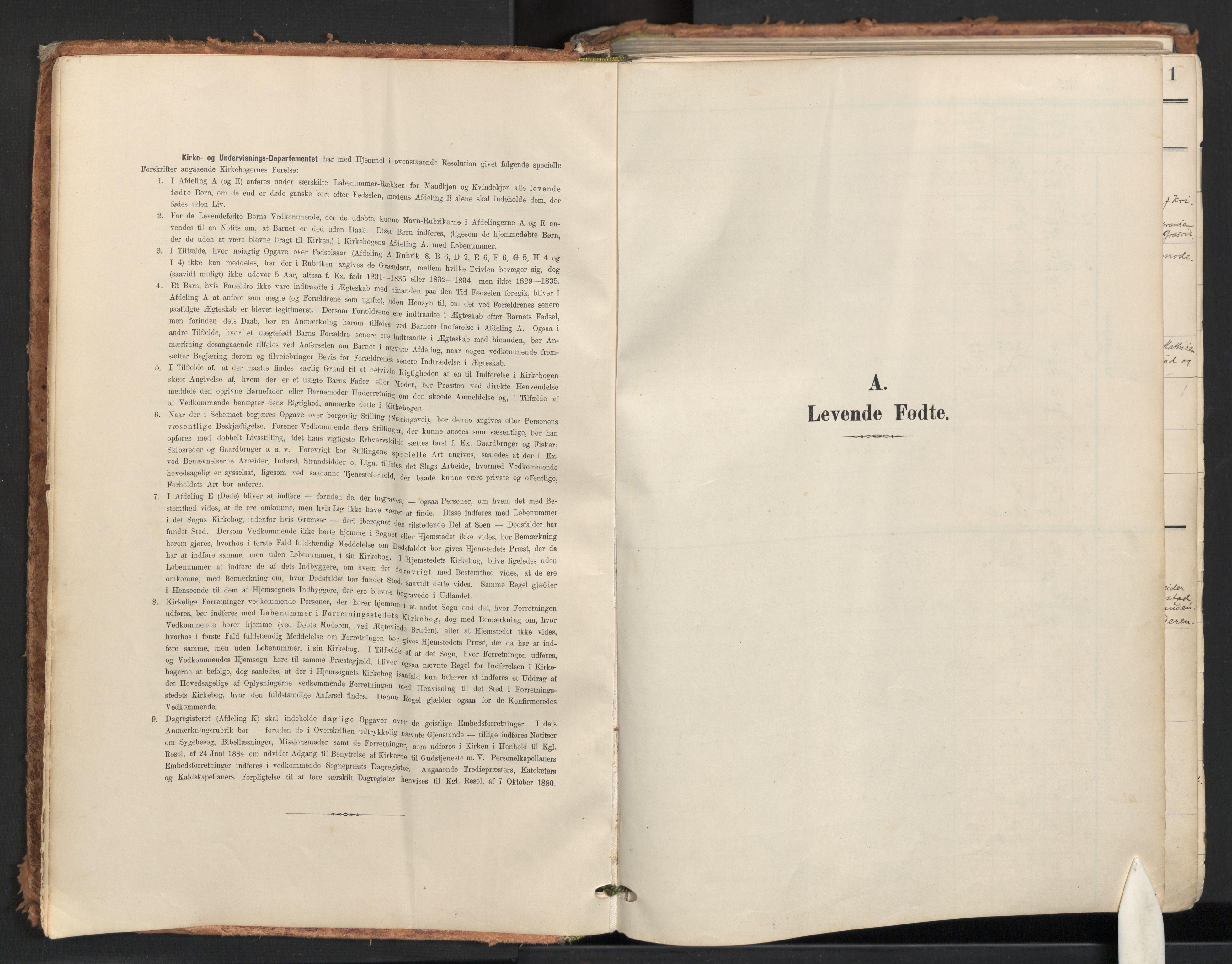 SAO, Råde prestekontor kirkebøker, F/Fa/L0008: Parish register (official) no. 8, 1903-1924