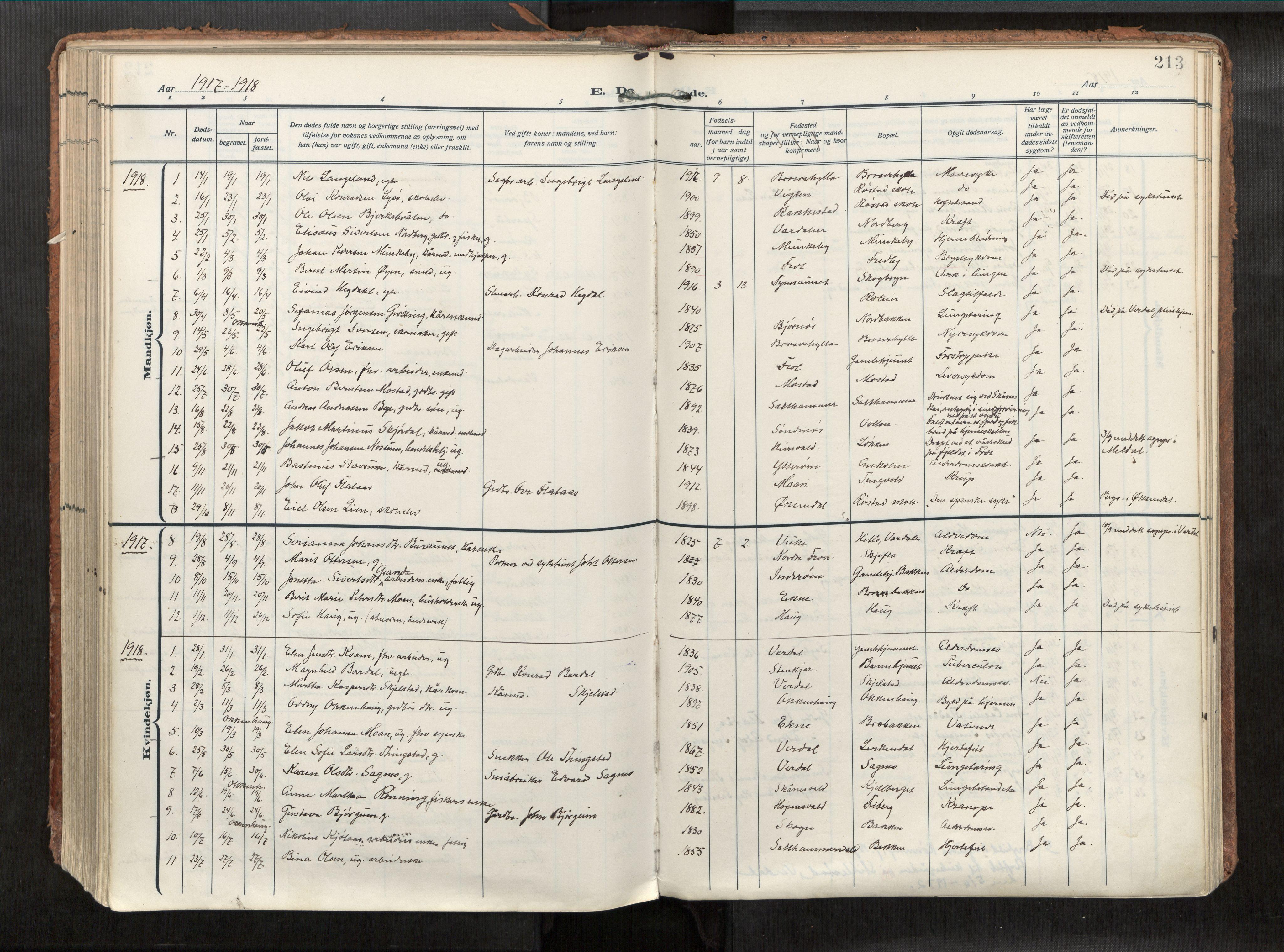 SAT, Levanger sokneprestkontor*, Parish register (official) no. 1, 1912-1935, p. 213