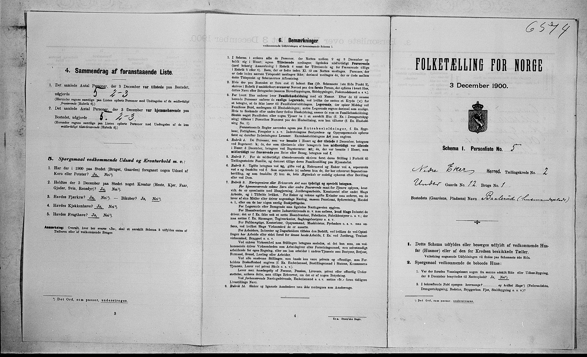 RA, 1900 census for Nedre Eiker, 1900, p. 258