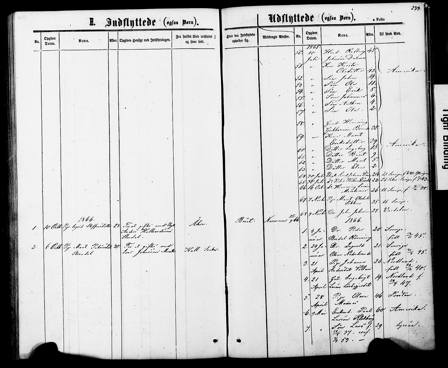 SAT, Ministerialprotokoller, klokkerbøker og fødselsregistre - Nord-Trøndelag, 706/L0049: Parish register (copy) no. 706C01, 1864-1895, p. 248