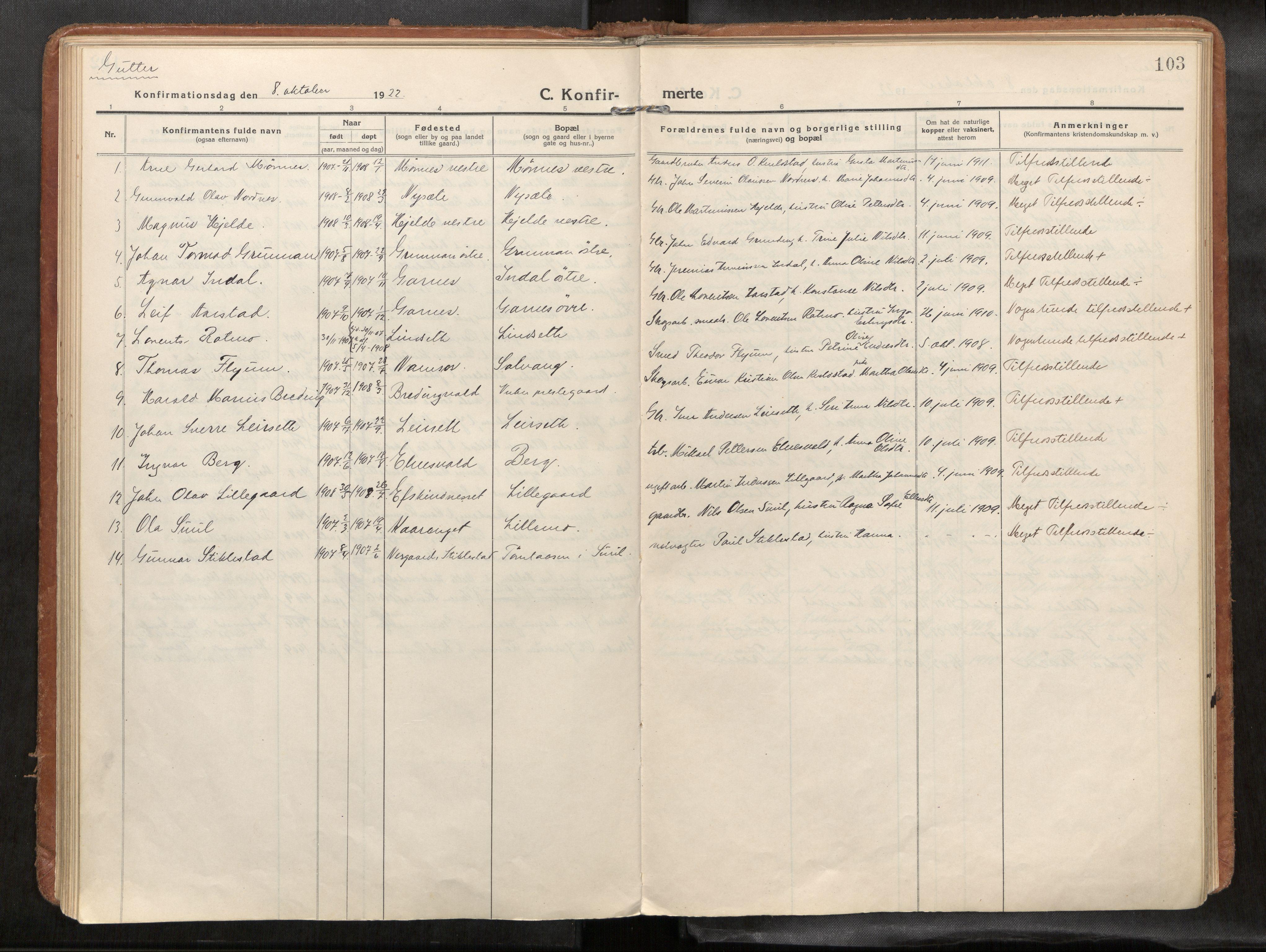 SAT, Verdal sokneprestkontor*, Parish register (official) no. 1, 1916-1928, p. 103