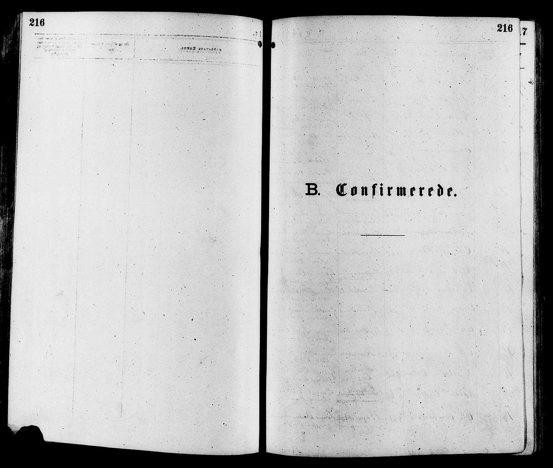 SAH, Sør-Aurdal prestekontor, Parish register (official) no. 8, 1877-1885, p. 216