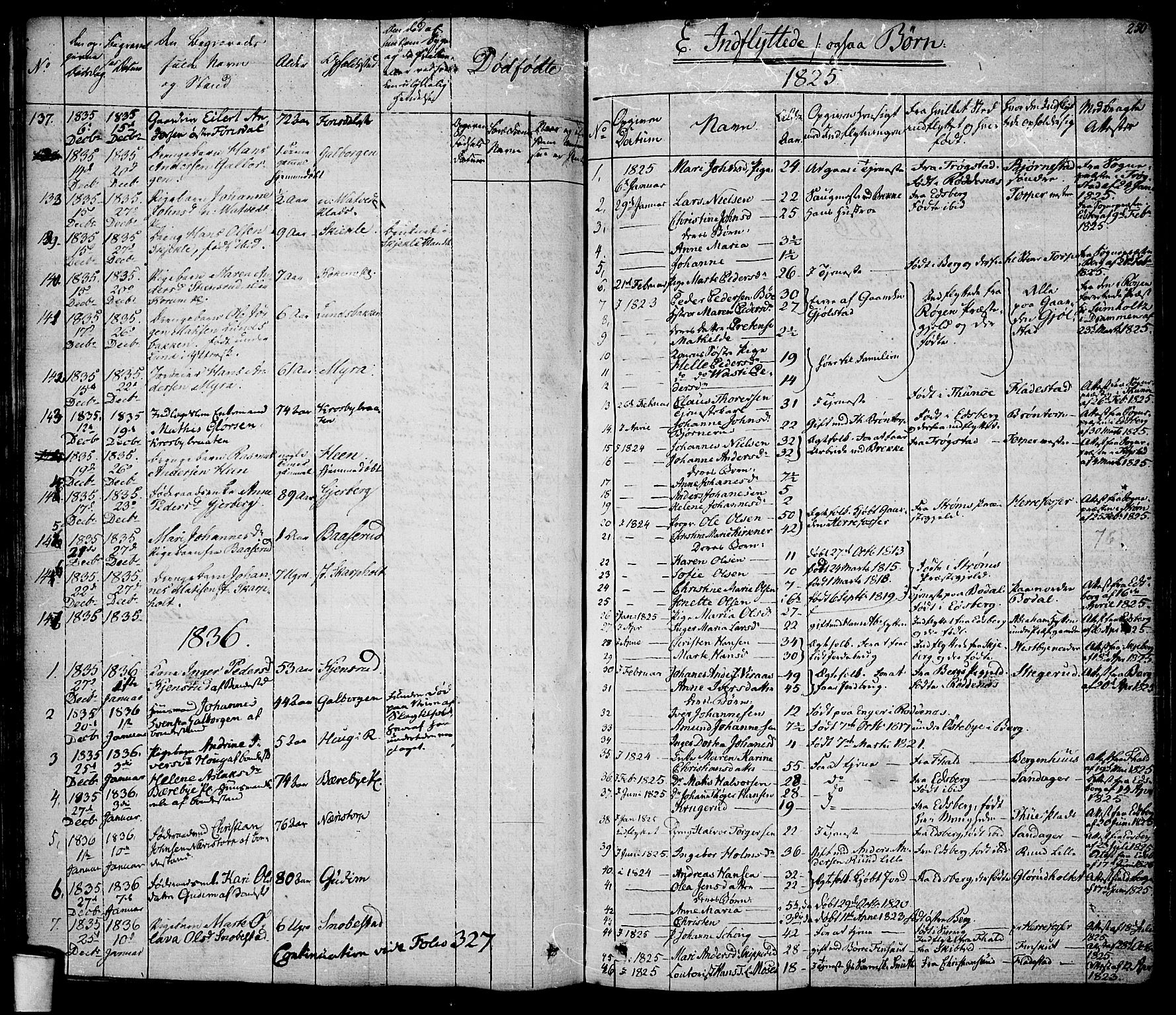 SAO, Rakkestad prestekontor Kirkebøker, F/Fa/L0007: Parish register (official) no. I 7, 1825-1841, p. 250