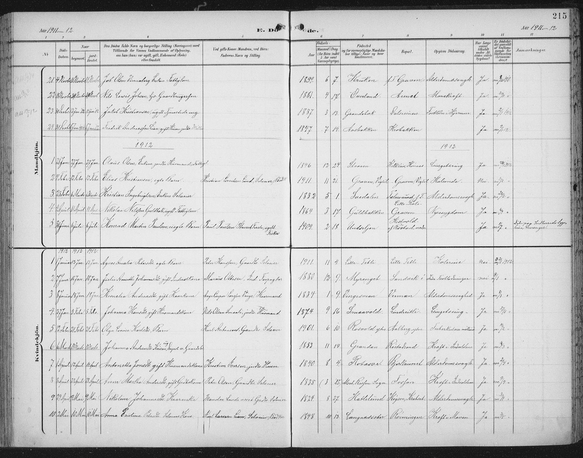 SAT, Ministerialprotokoller, klokkerbøker og fødselsregistre - Nord-Trøndelag, 701/L0011: Parish register (official) no. 701A11, 1899-1915, p. 215
