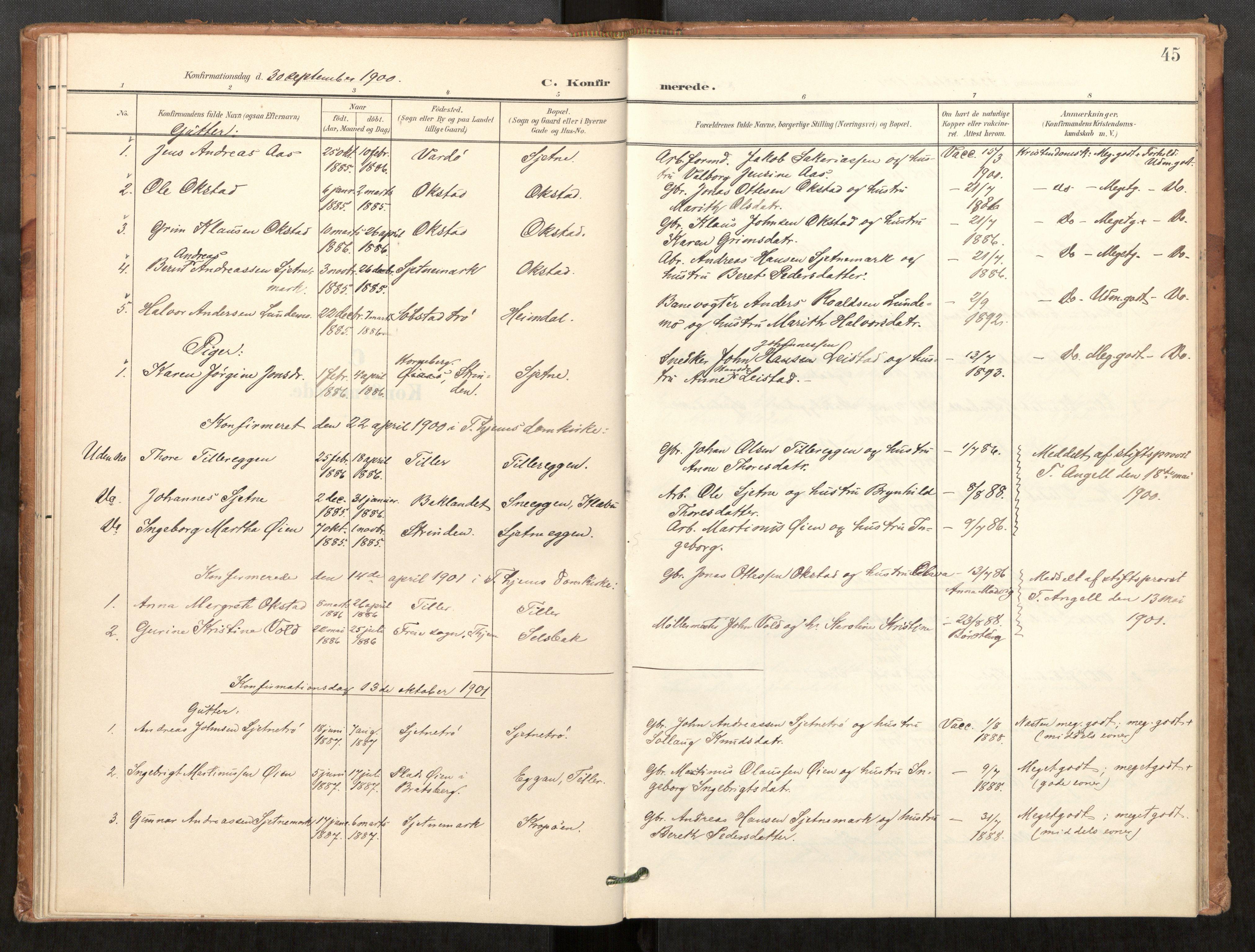 SAT, Klæbu sokneprestkontor, Parish register (official) no. 2, 1900-1916, p. 45